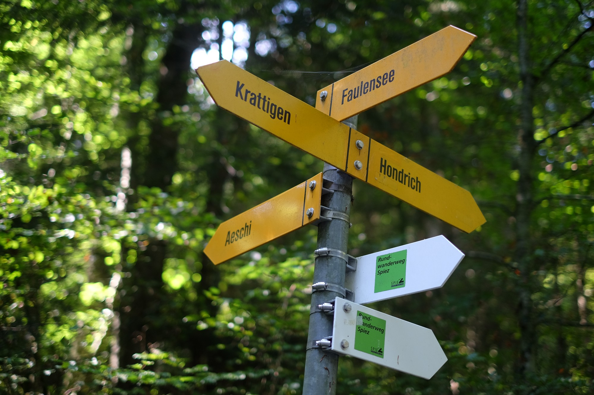 Signpost with direction arrows