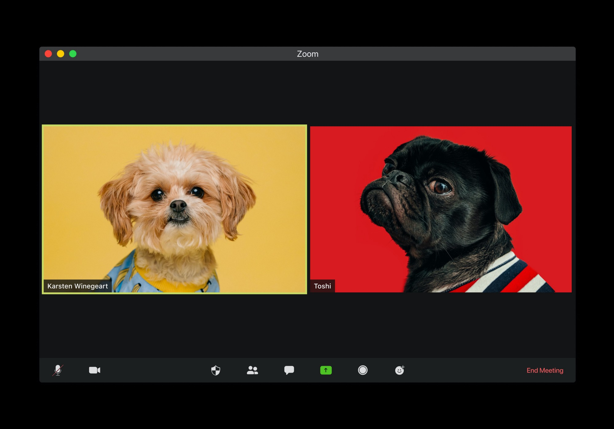 Two dog avatars on a zoom call.