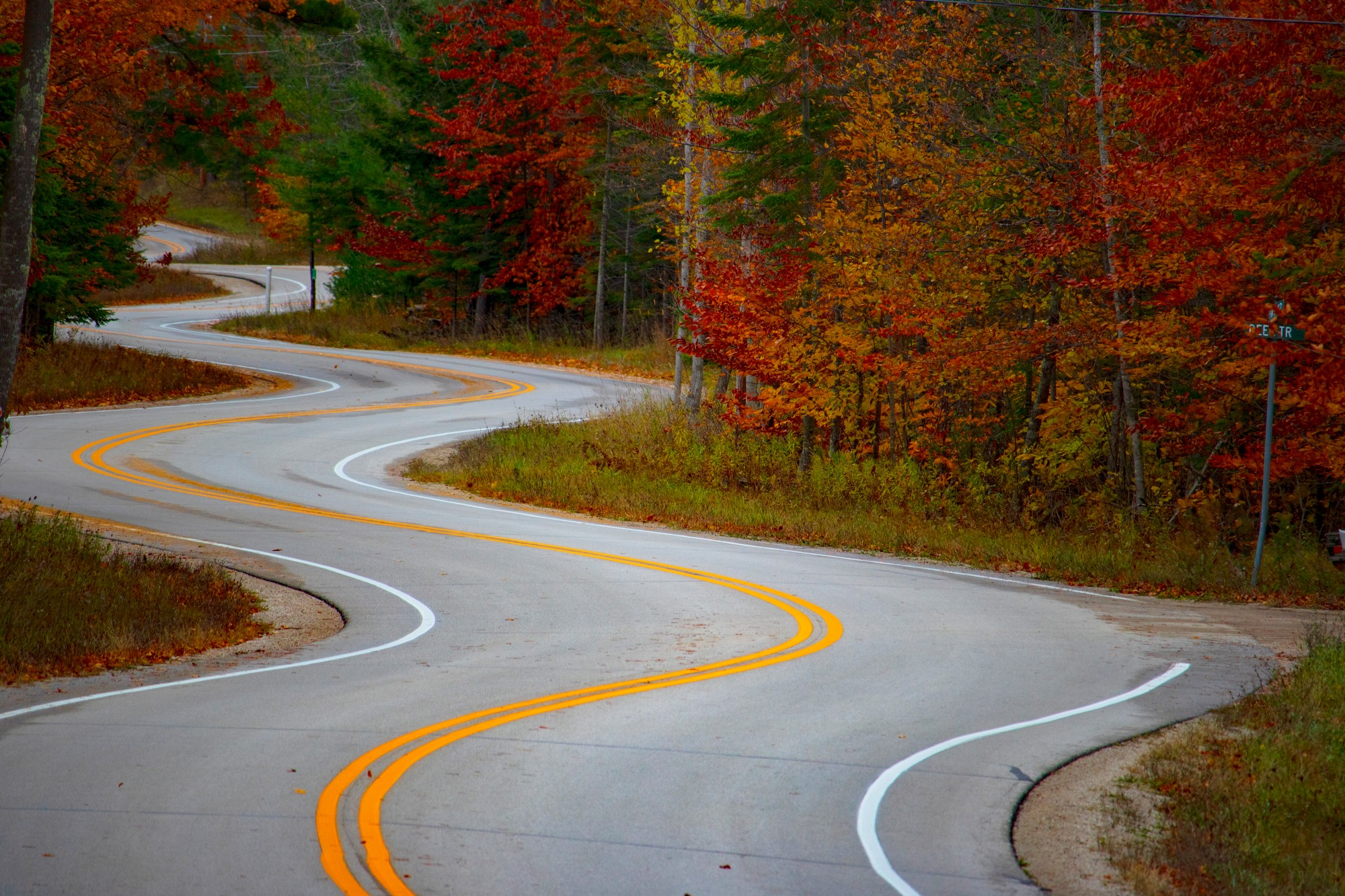 Curvy road with beautiful autumn colored leaves on trees