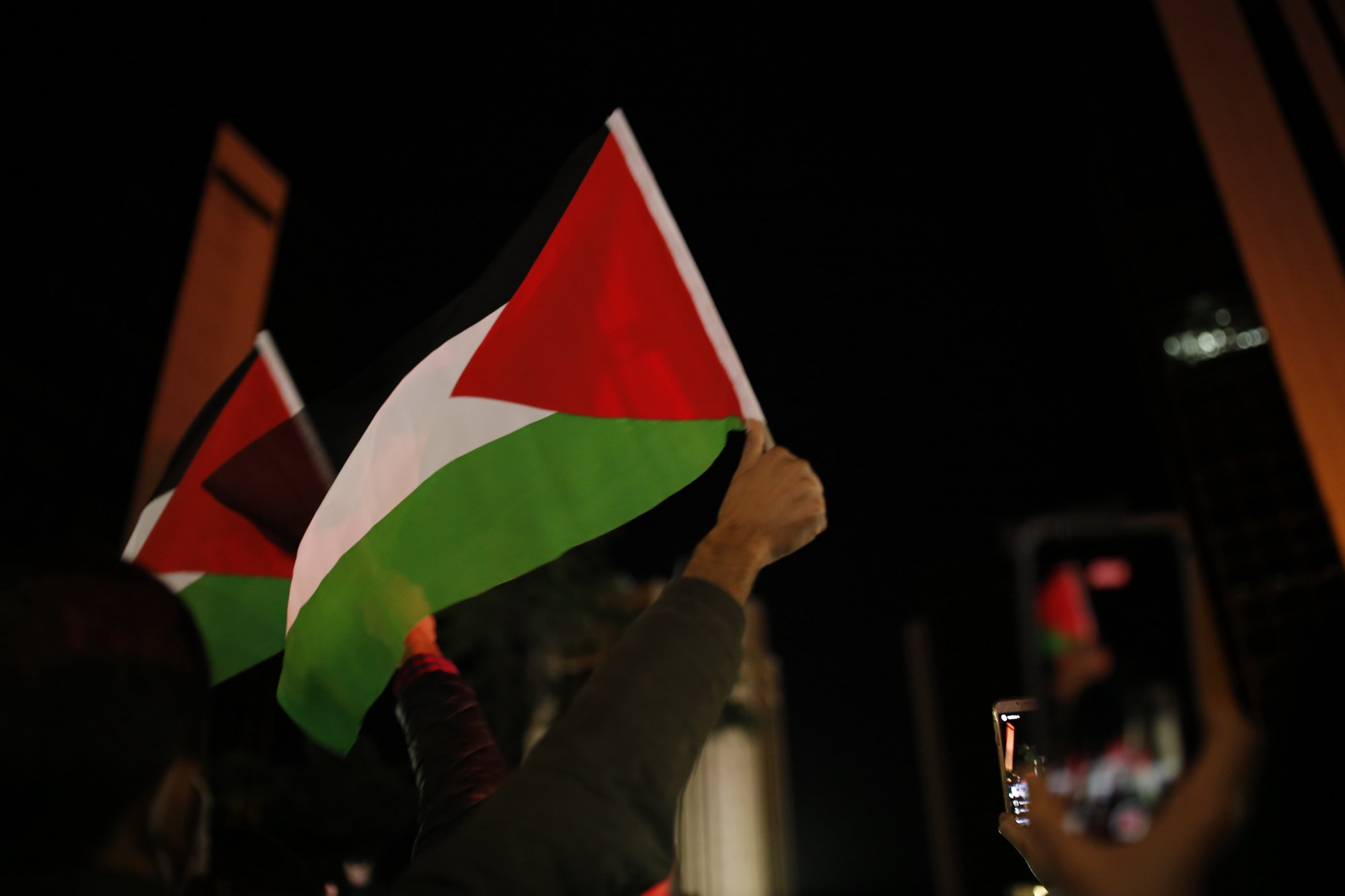 the picture is about Palestine flag