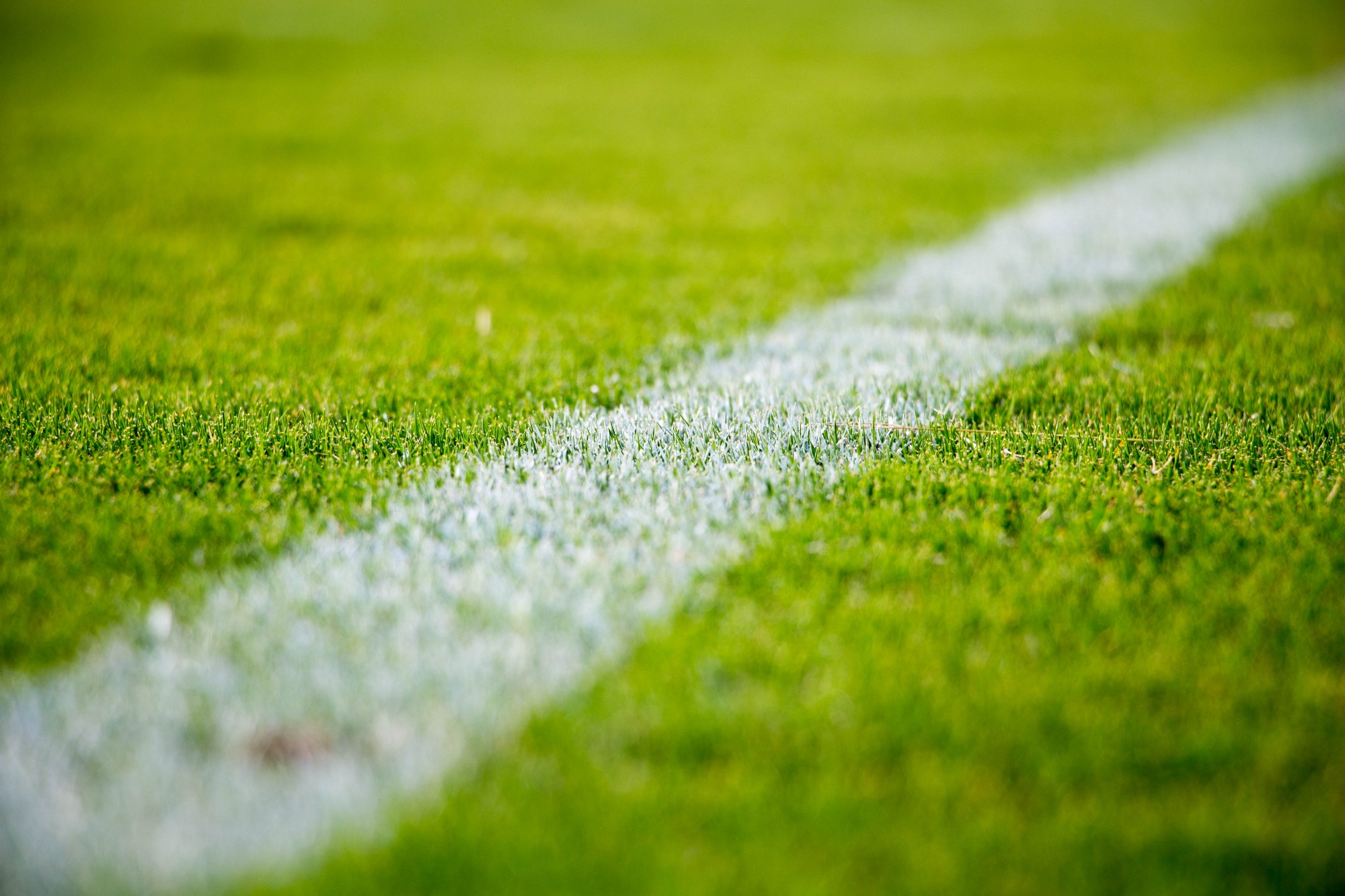 Close-up of grassy sports field.