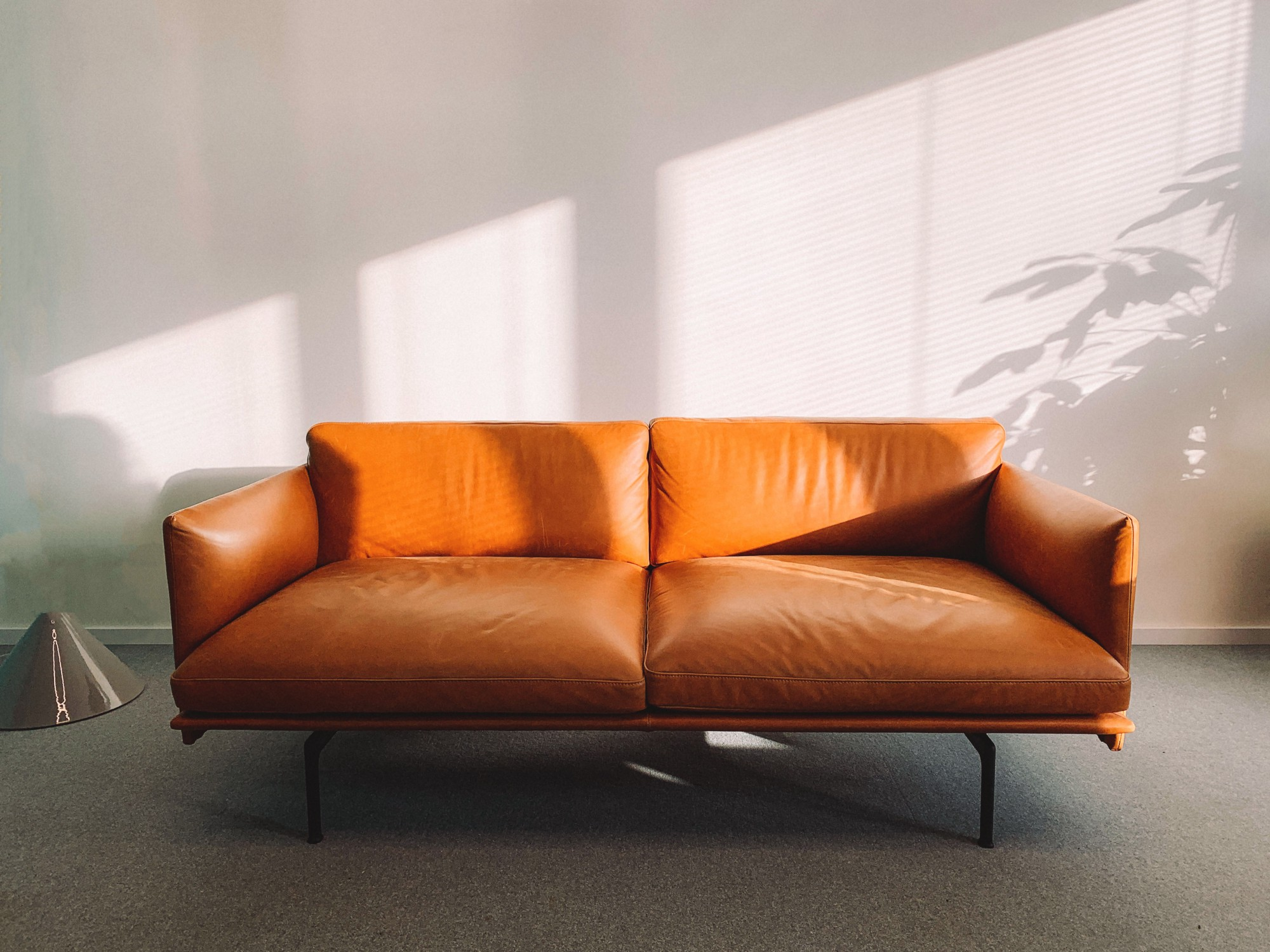 Orange leather couch in an empty room with sunbeams and shadows of a plant on the white wall