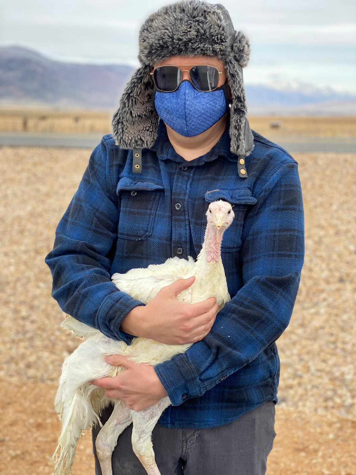 A person in a blue flannel shirt, mask, and hat holds a cute young white turkey who seems to be looking at the camera