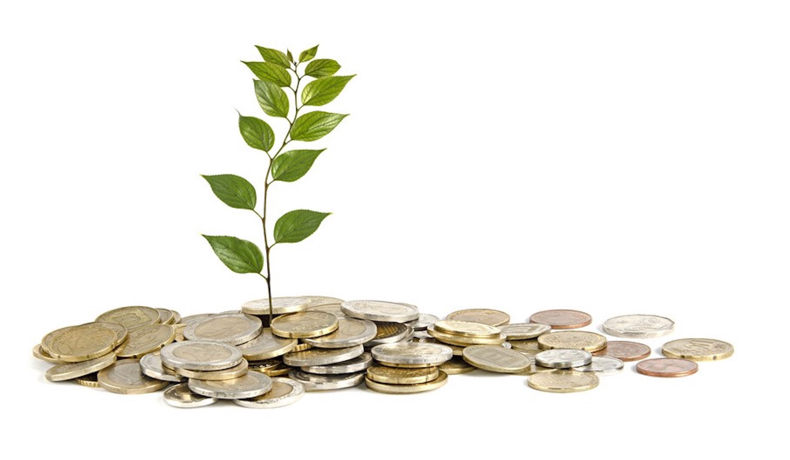 How Much Money Should I Raise For My Seed Round?   by Tomer Dicturel   pushtostart   Medium