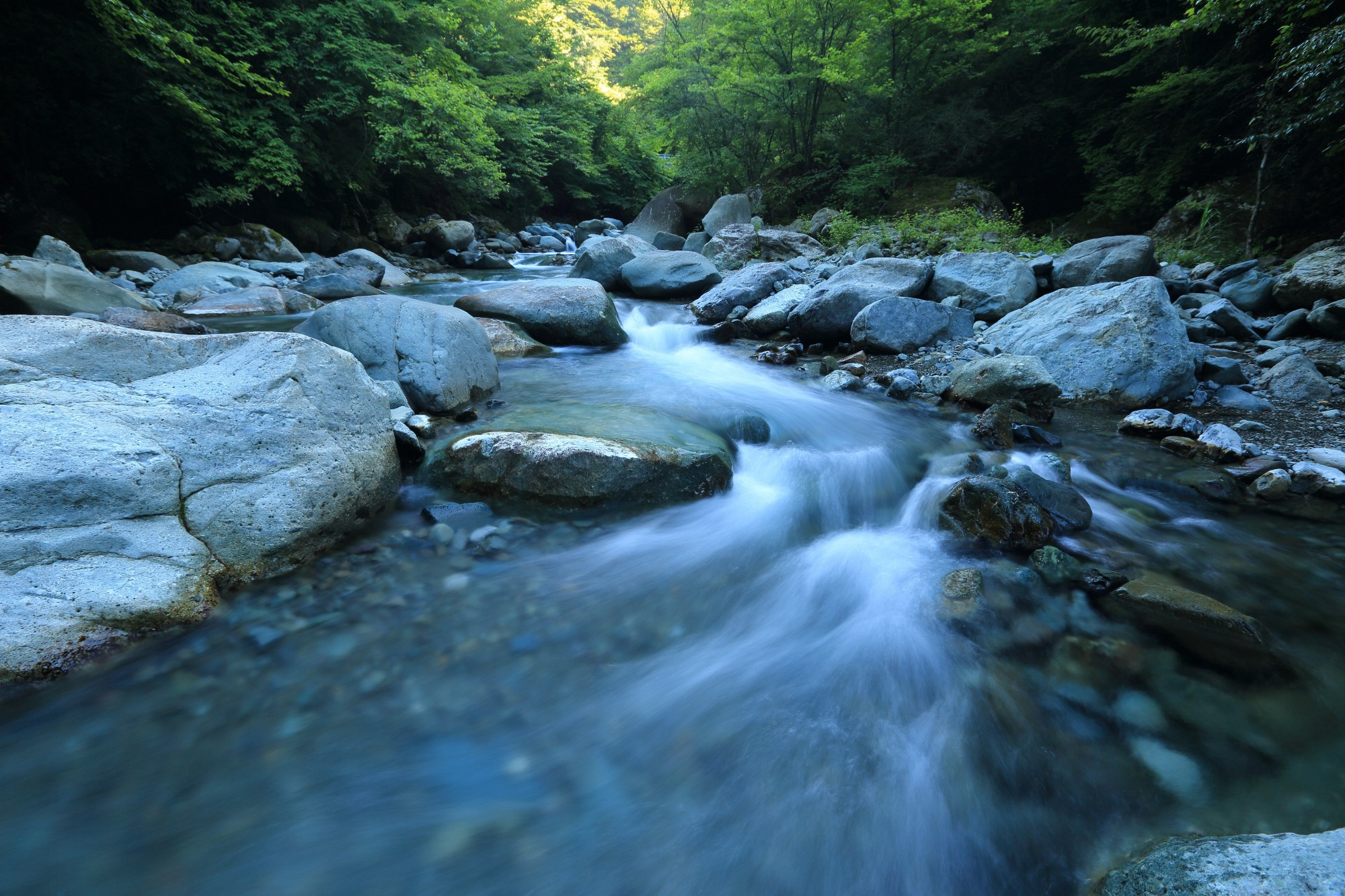 A rushing river flowing around stones.