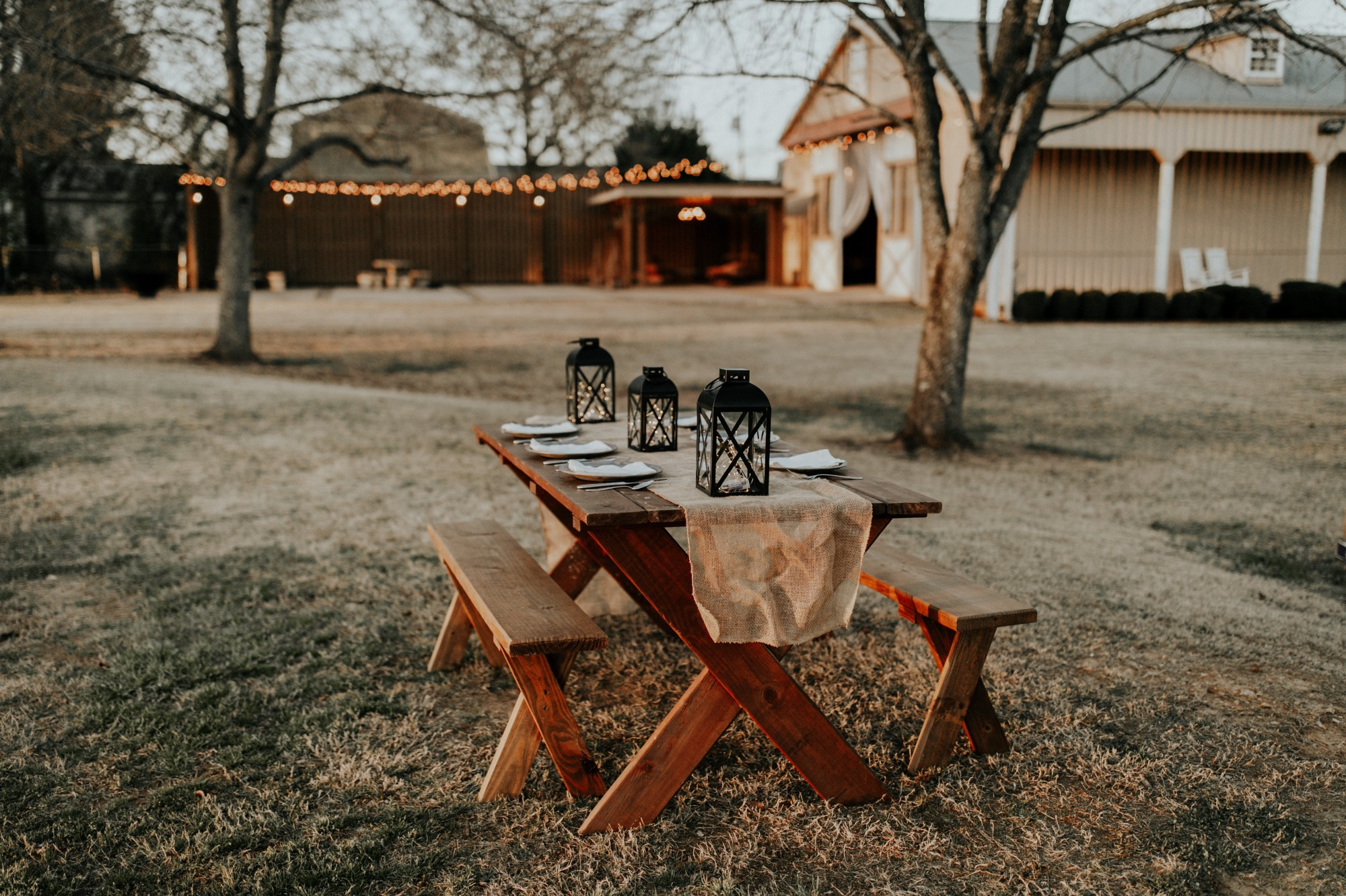 A picnic table dressed for a meal. Barren trees and a house decorated with lights are in the background.