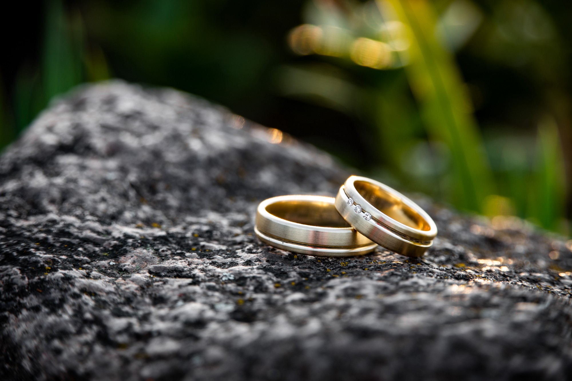 A pair of gold wedding rings, placed artistically on a log