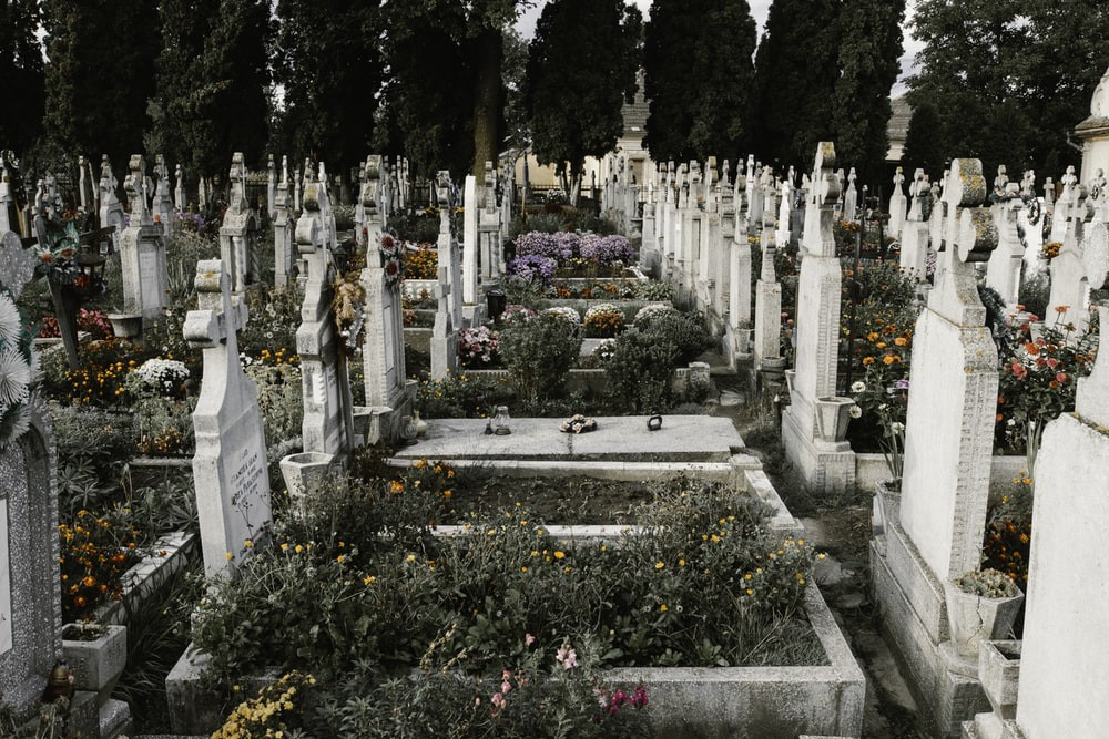 Image of a graveyard with various tombstones