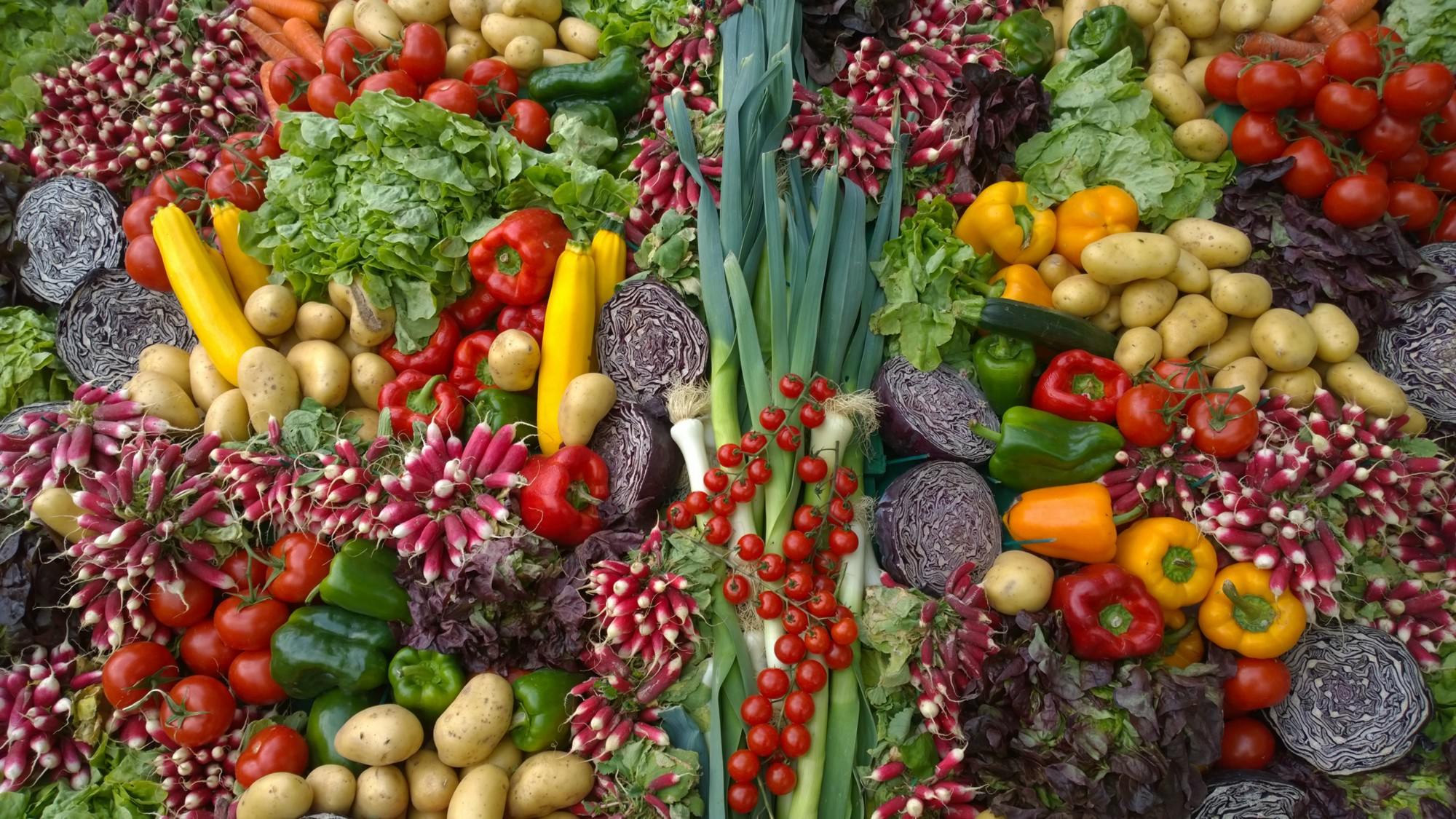 A huge variety of colorful vegetables, such as bell peppers, red cabbage, radishes, leeks, and yellow squash.