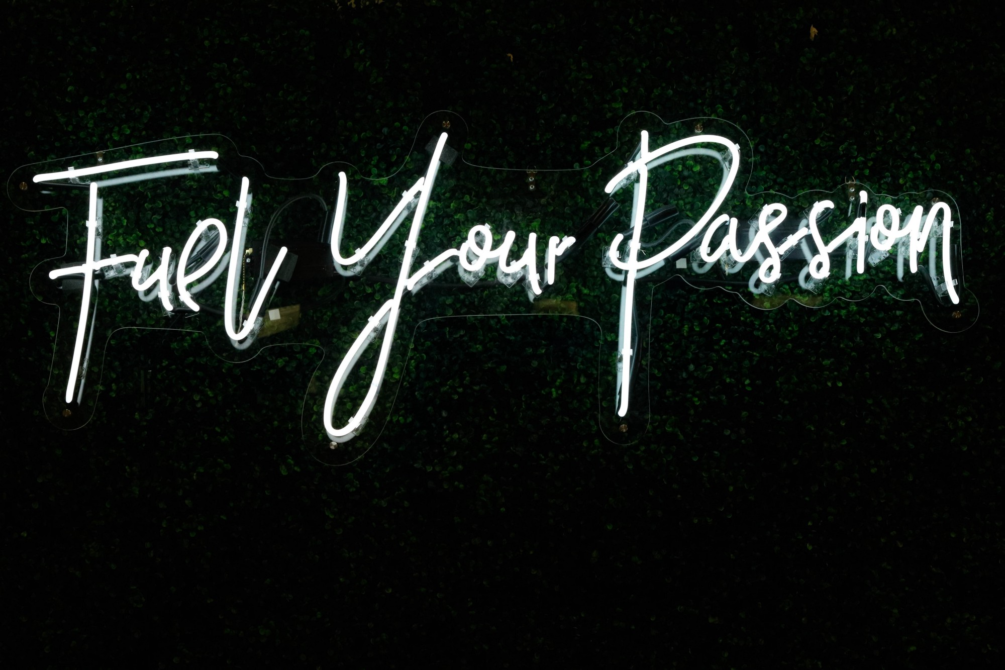Neon sign in cursive writing in white lights that says Fuel Your Passion on black background.