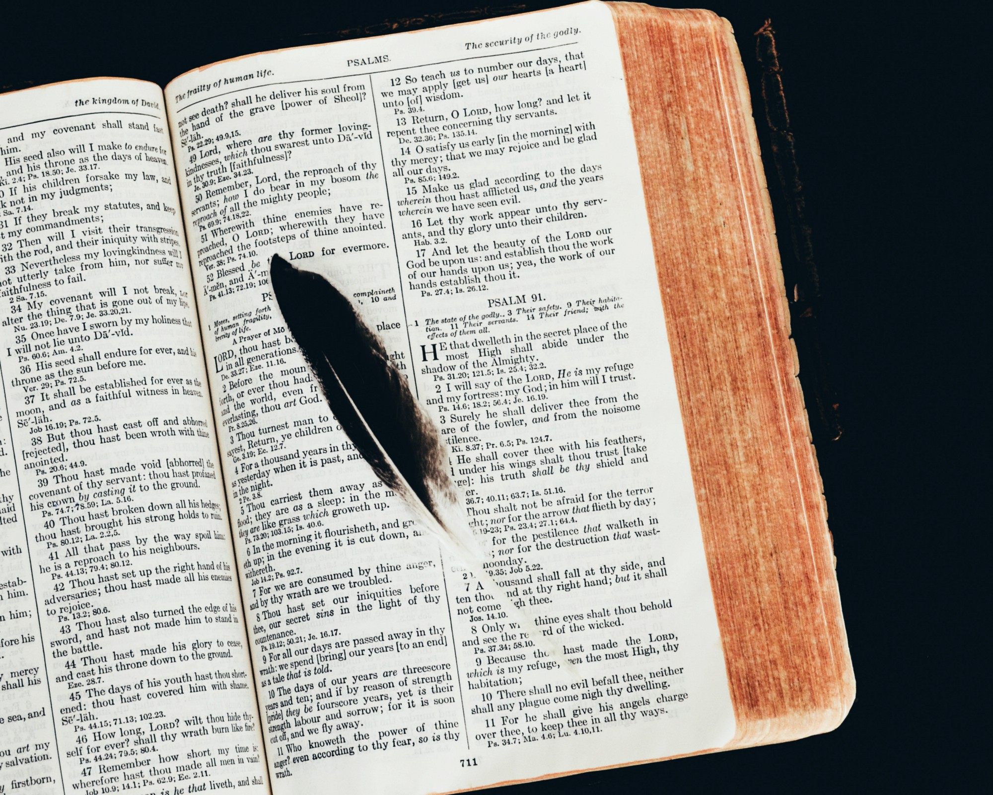 Open Bible with a feather lying on a page.