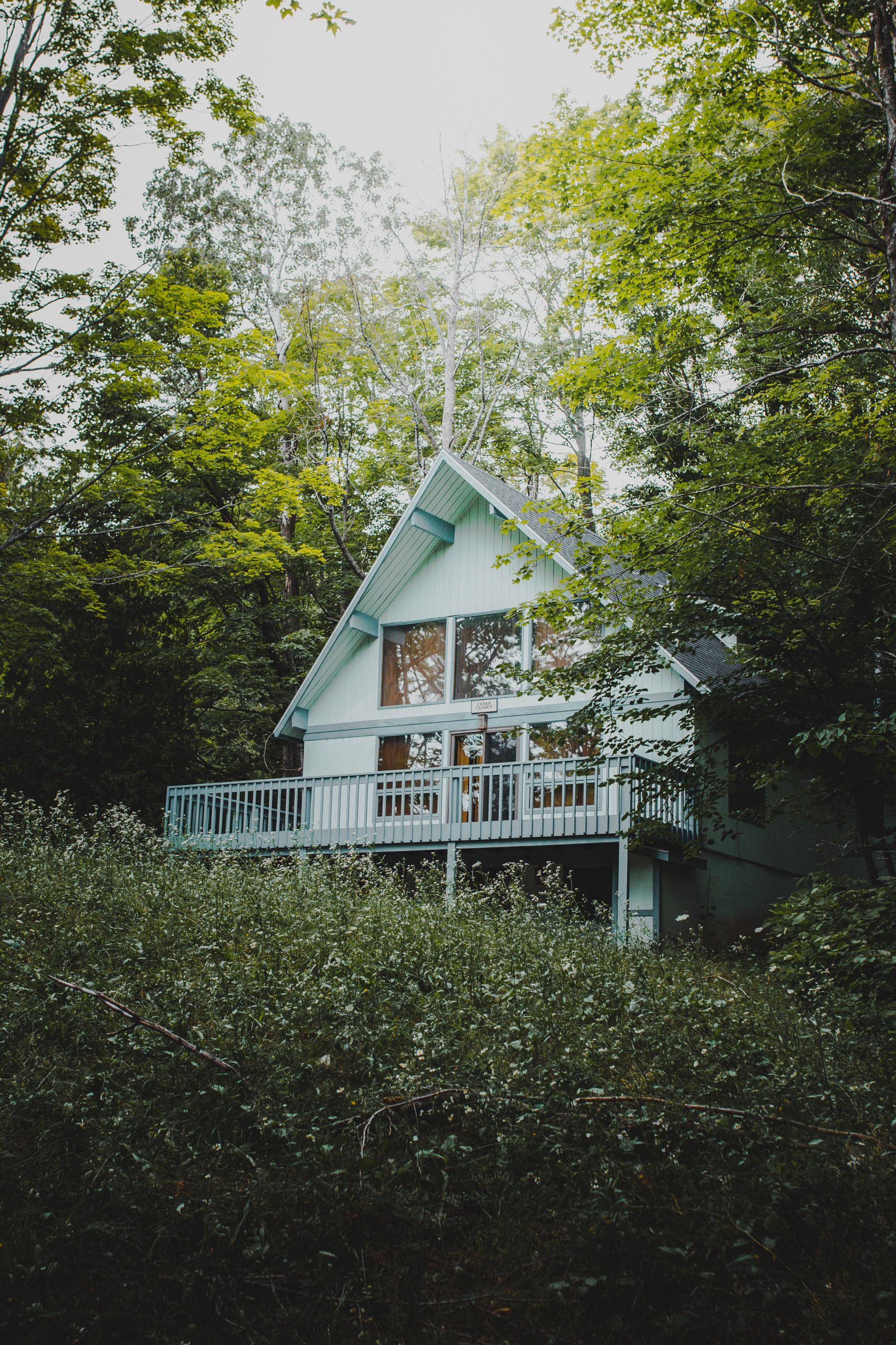 House partially hidden by trees