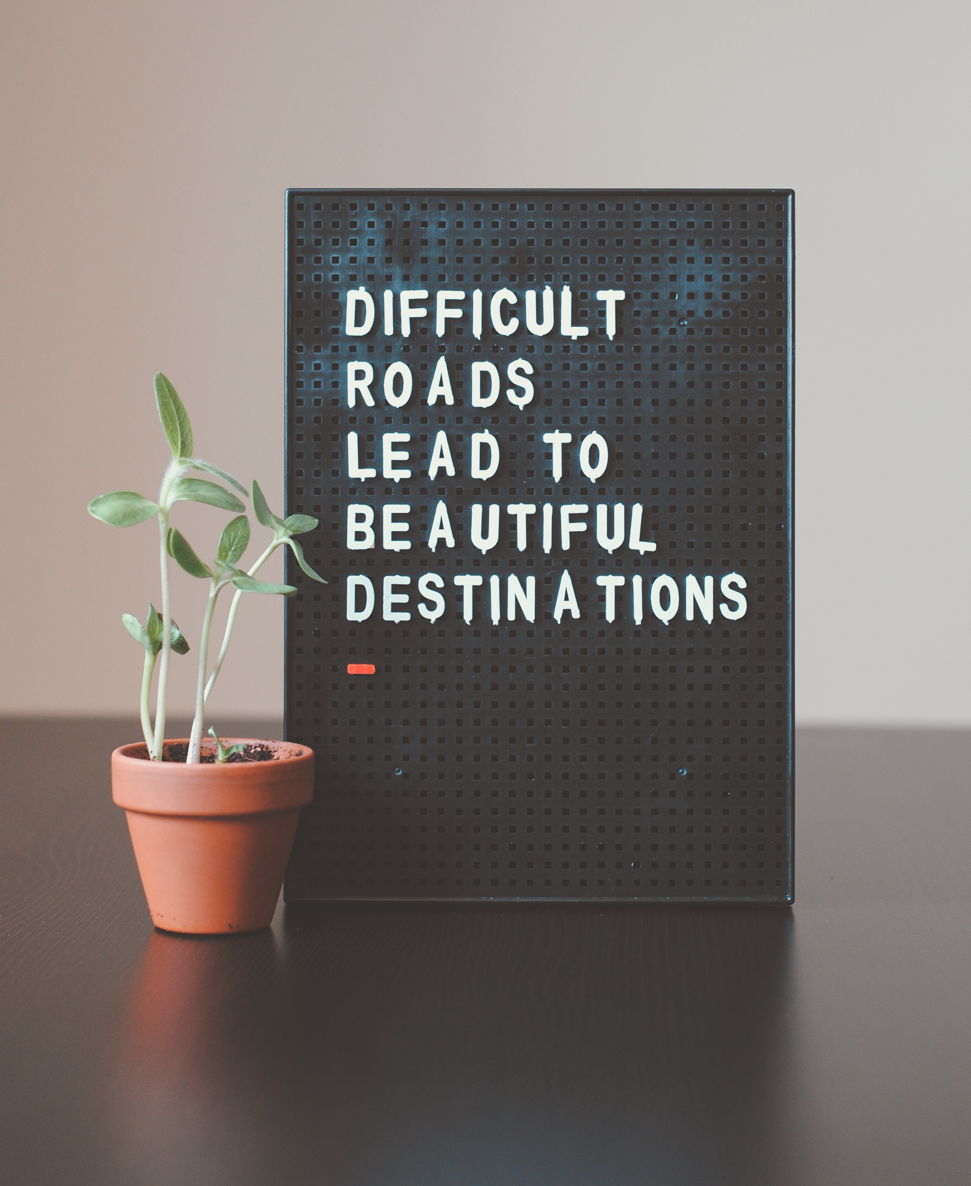 "A small board reads ""Difficult Roads Lead to Beautiful Destinations."" The board is next to small potted plant."