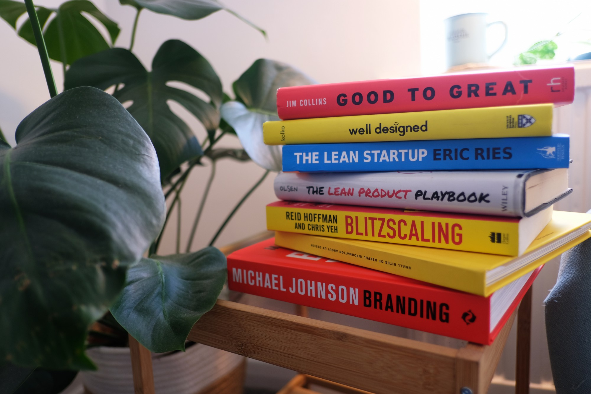 Stack of product management books on top of a table, next to a plant and in front of a window.