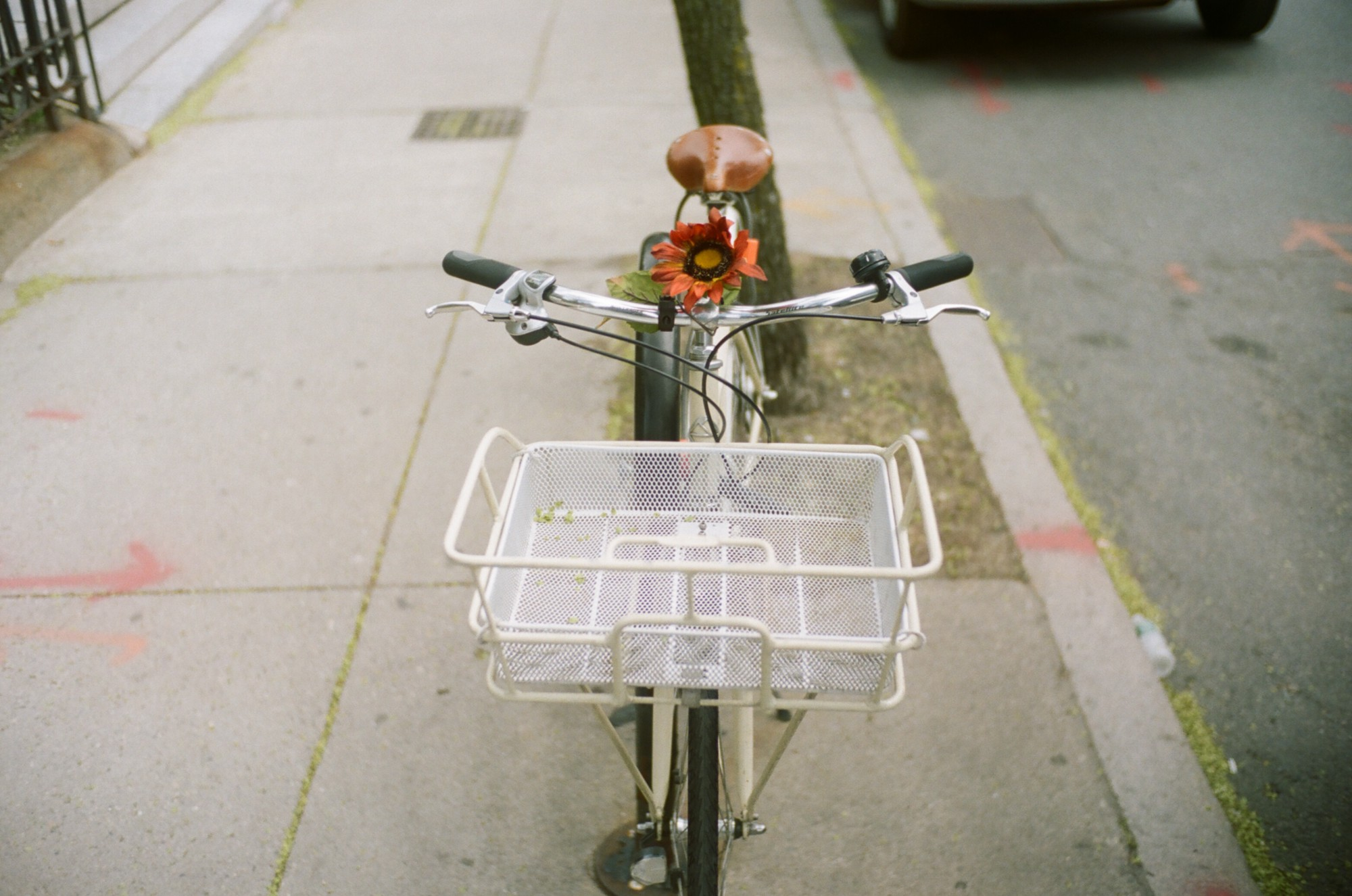 Shot of a parked bike on a sidewalk. A basket is on the front of the bike.