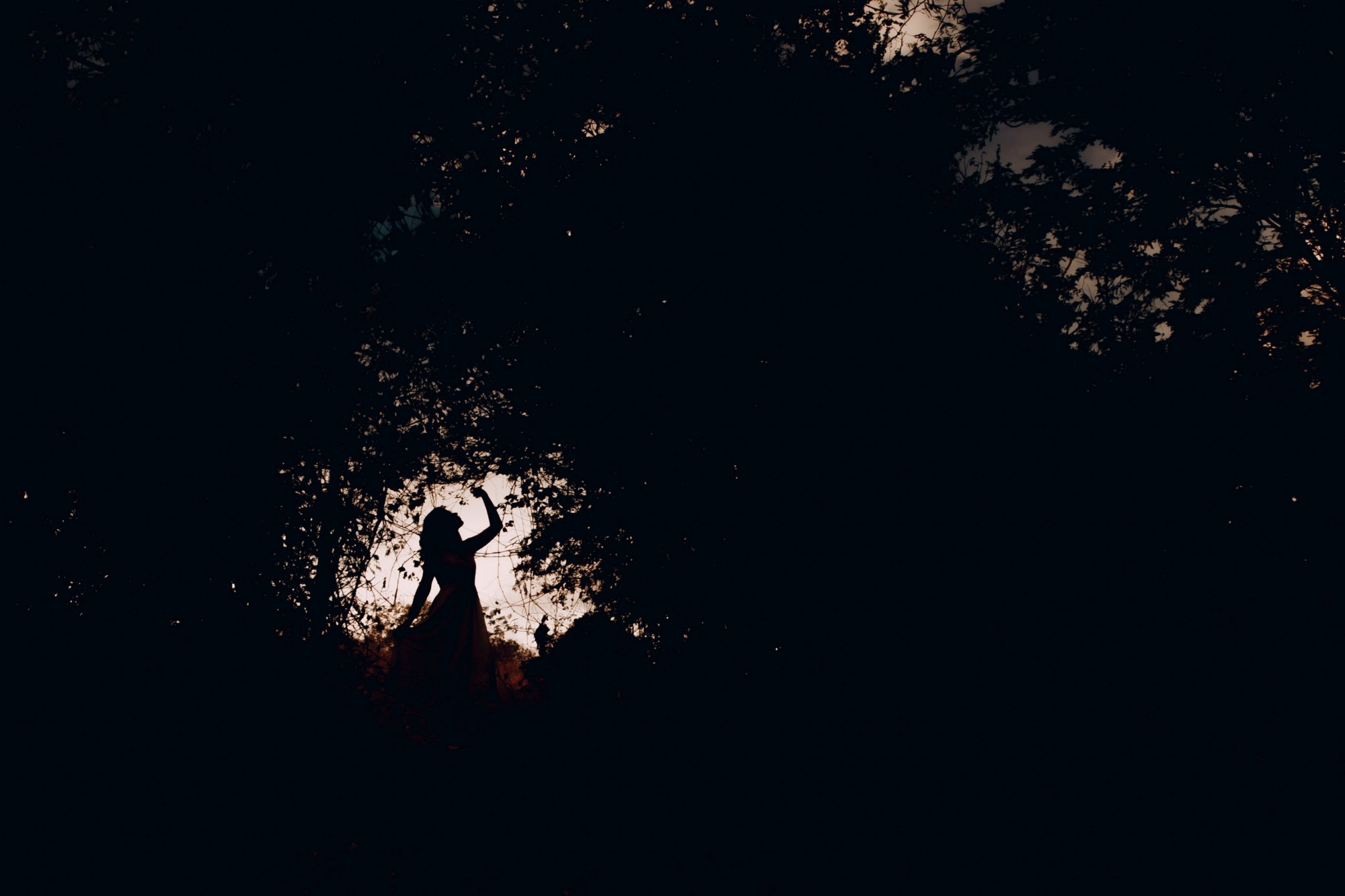 Silhouette of a girl in the woods