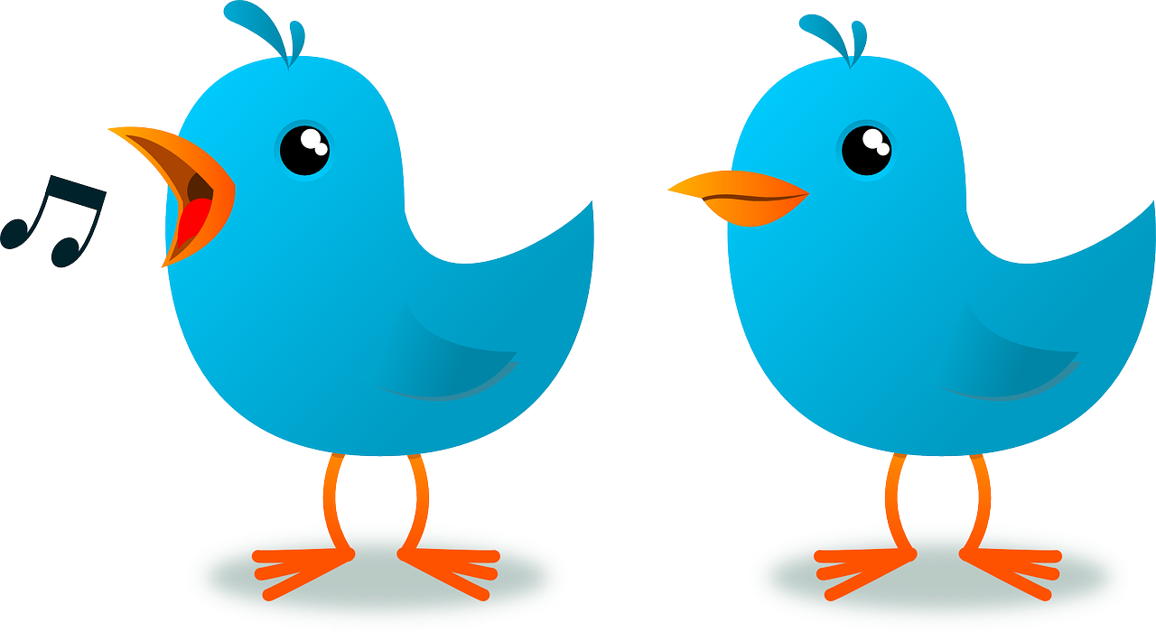 Two blue birds in cartoon form