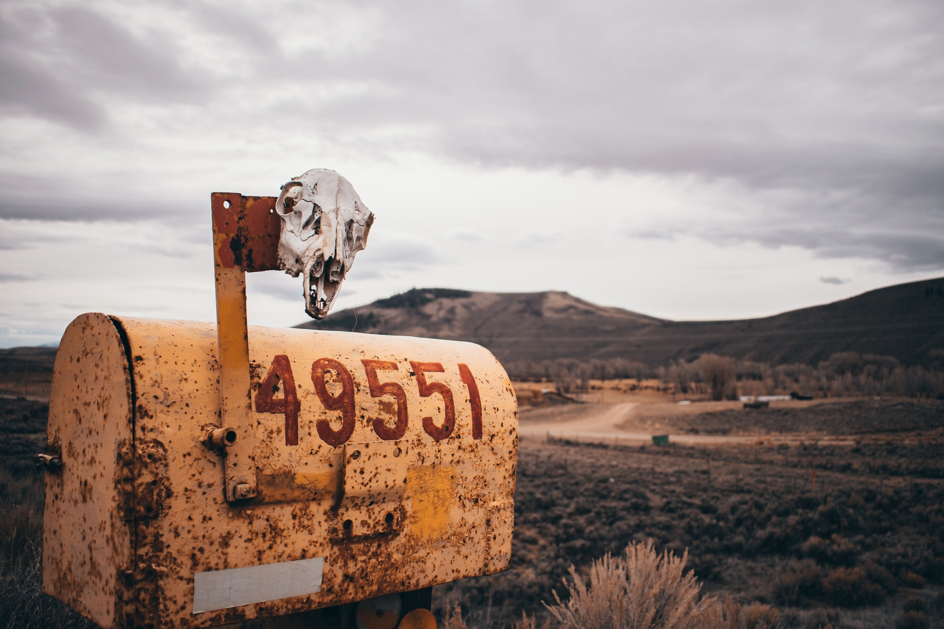 A mailbox with a skull placed on top out in the desert