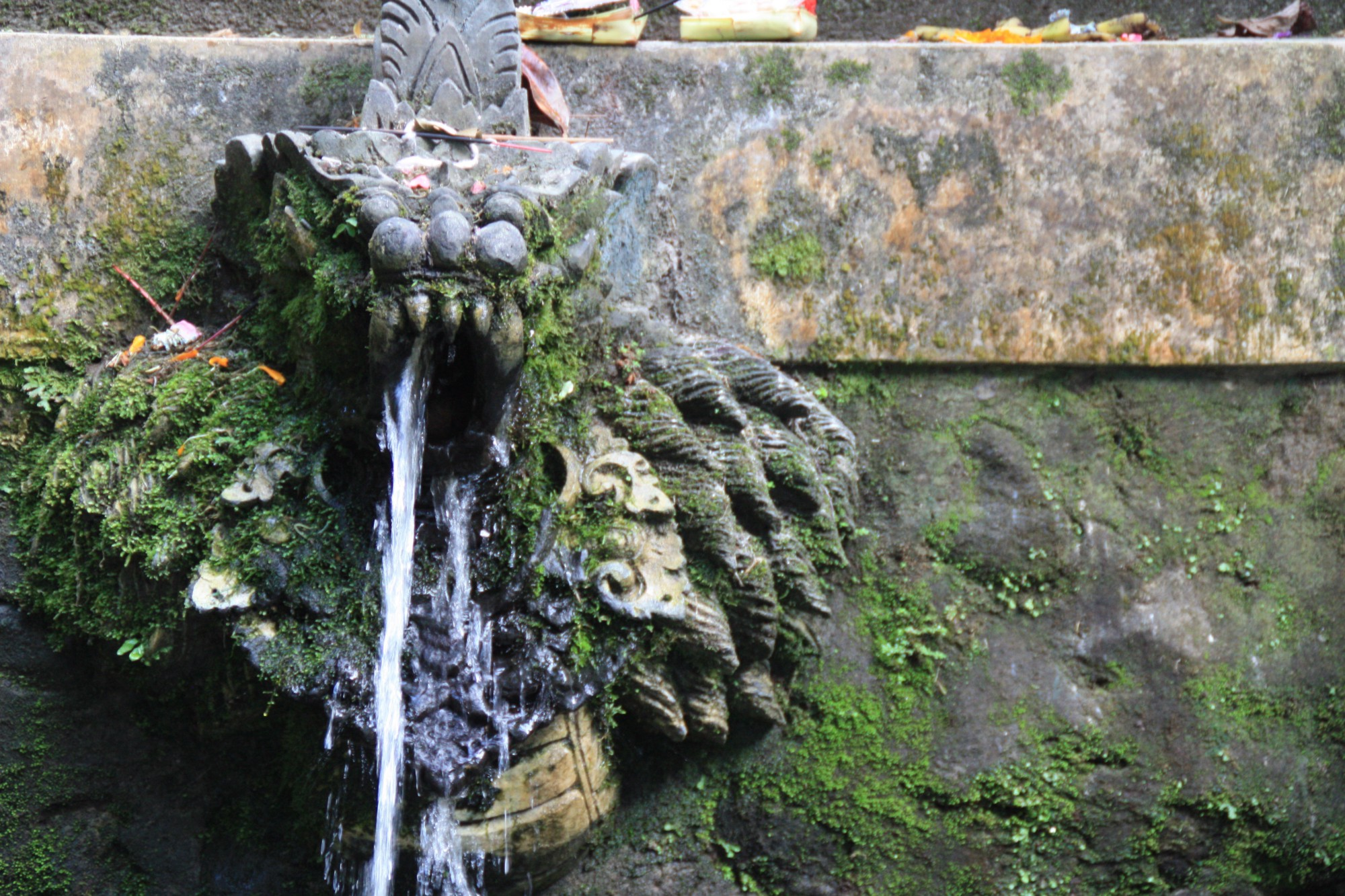 A close up of a stone water spout covered in moss, adorned with incense and offerings.
