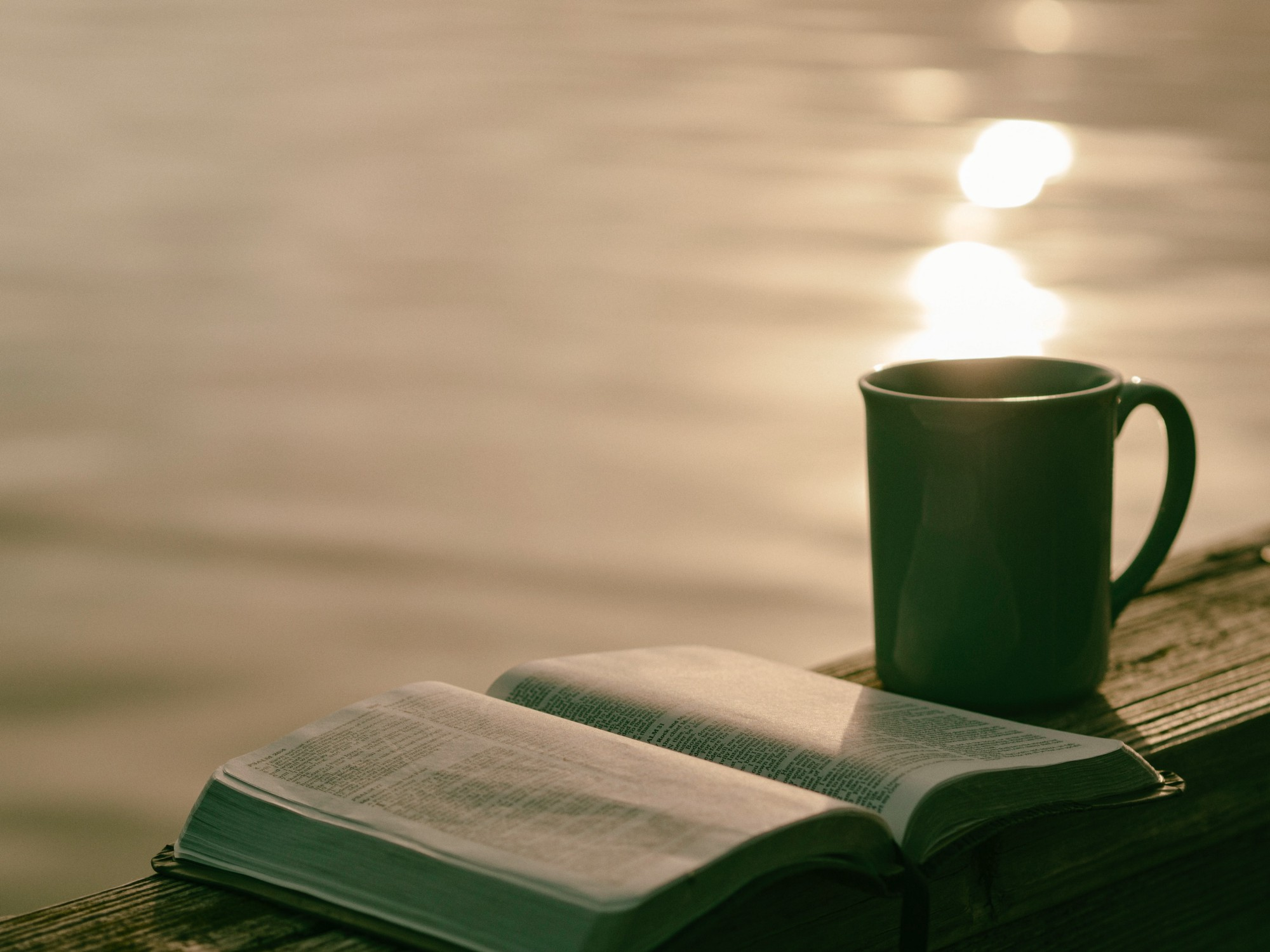 Open book and green mug in evening sun with water in the background.