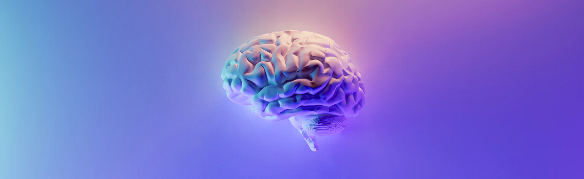 Image of a brain since all the decisions are made by our brain