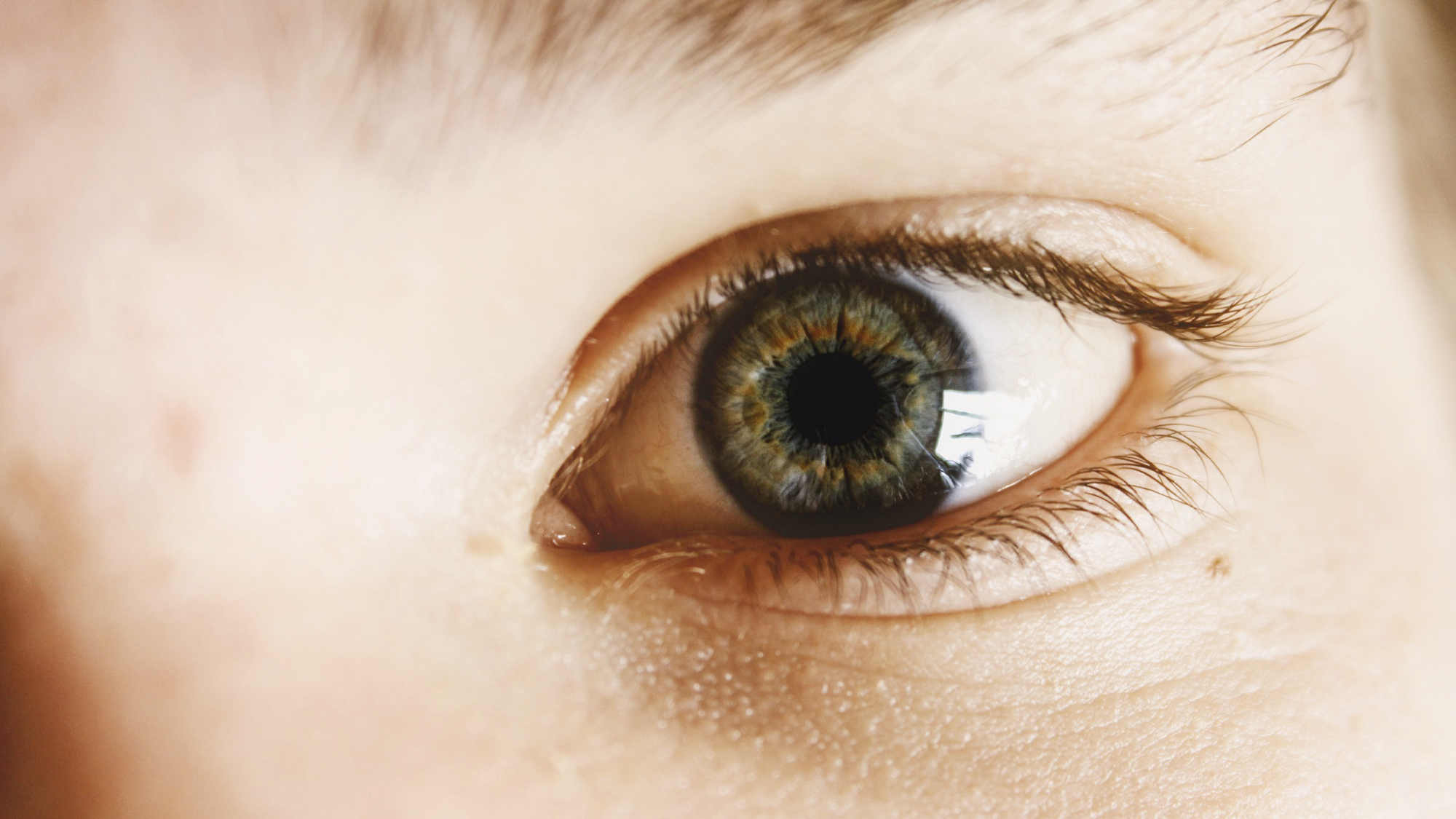 A close up picture of a person's left eye.