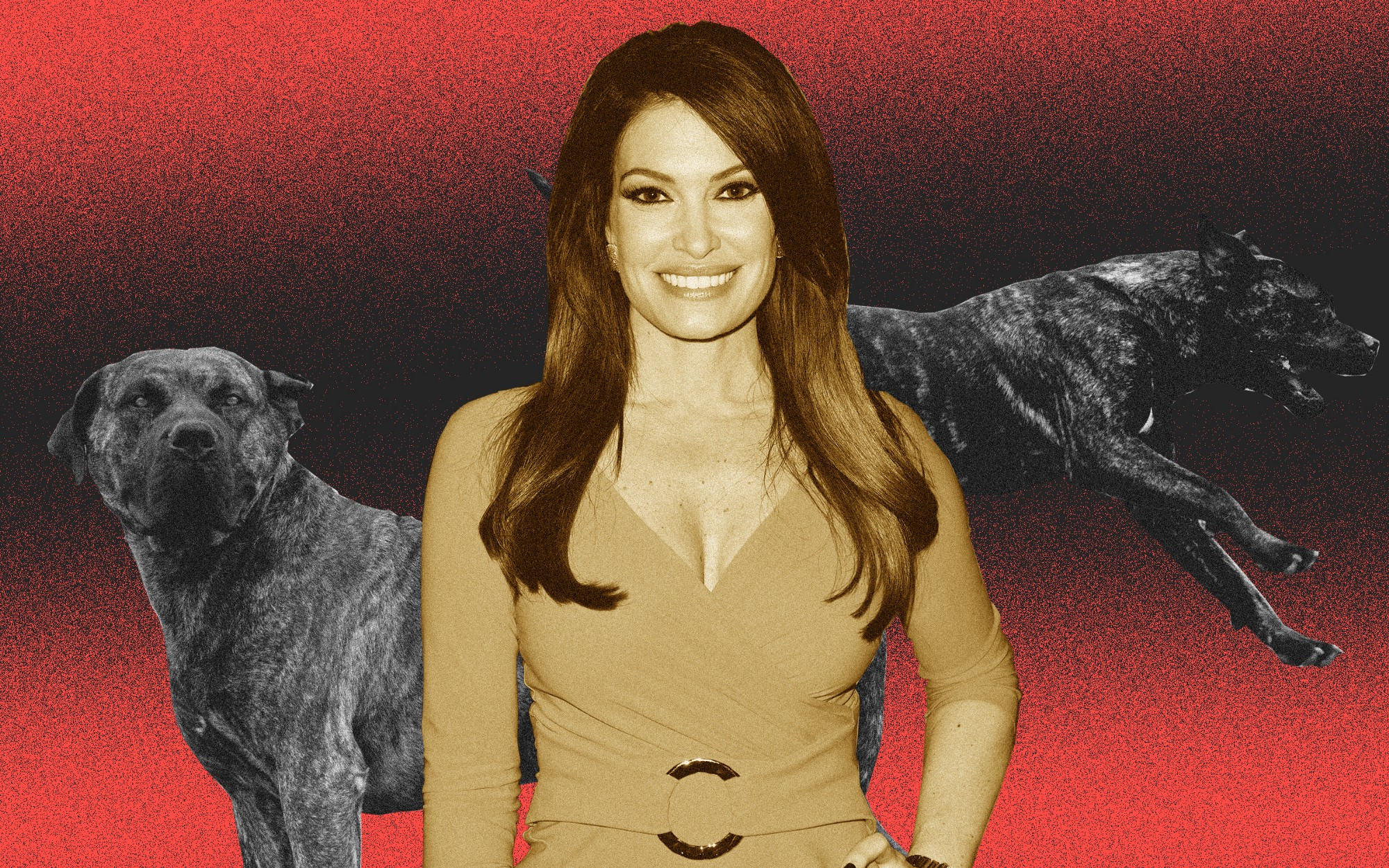 Kimberly Guilfoyle juxtaposed against a background of two Presa Canario dogs, a mastiff breed.