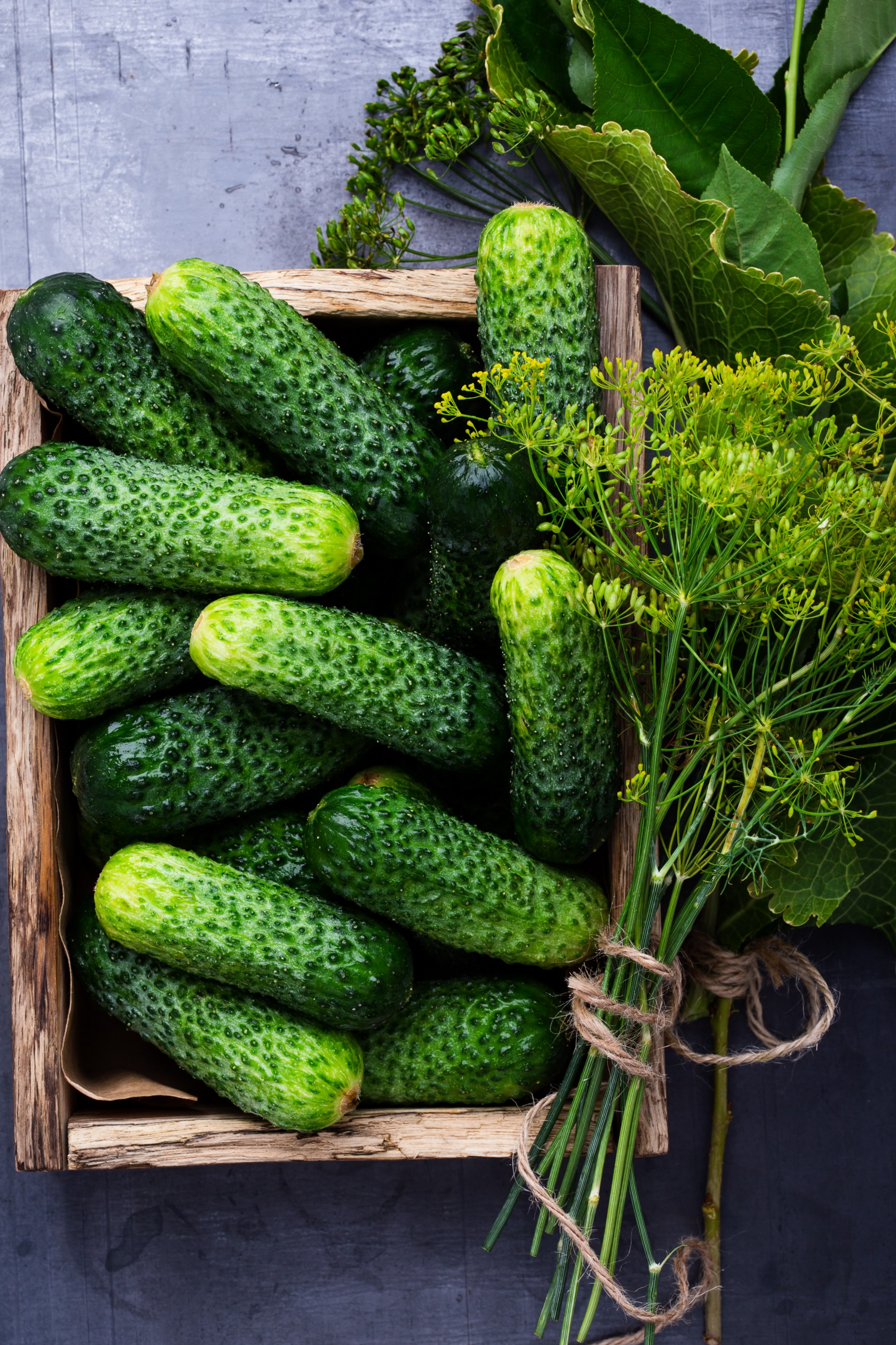 Overhead shot of a rustic square wooden basket filled with cucumbers and a bunch of fresh dill tied with a piece of twine.