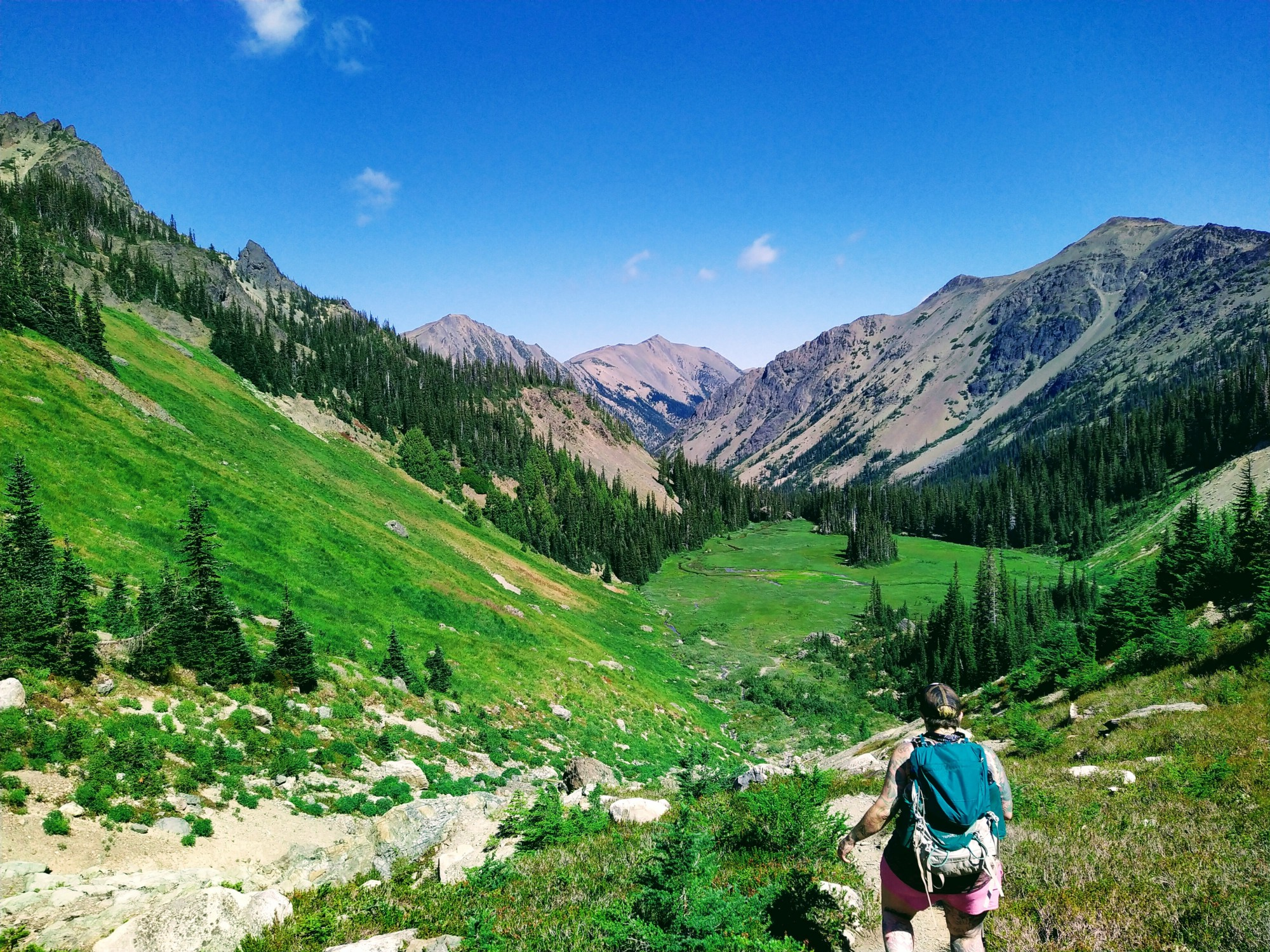 A hiker negotiates a trail in the Royal Basin of the Olympic Mountains. (Naomi Gross)