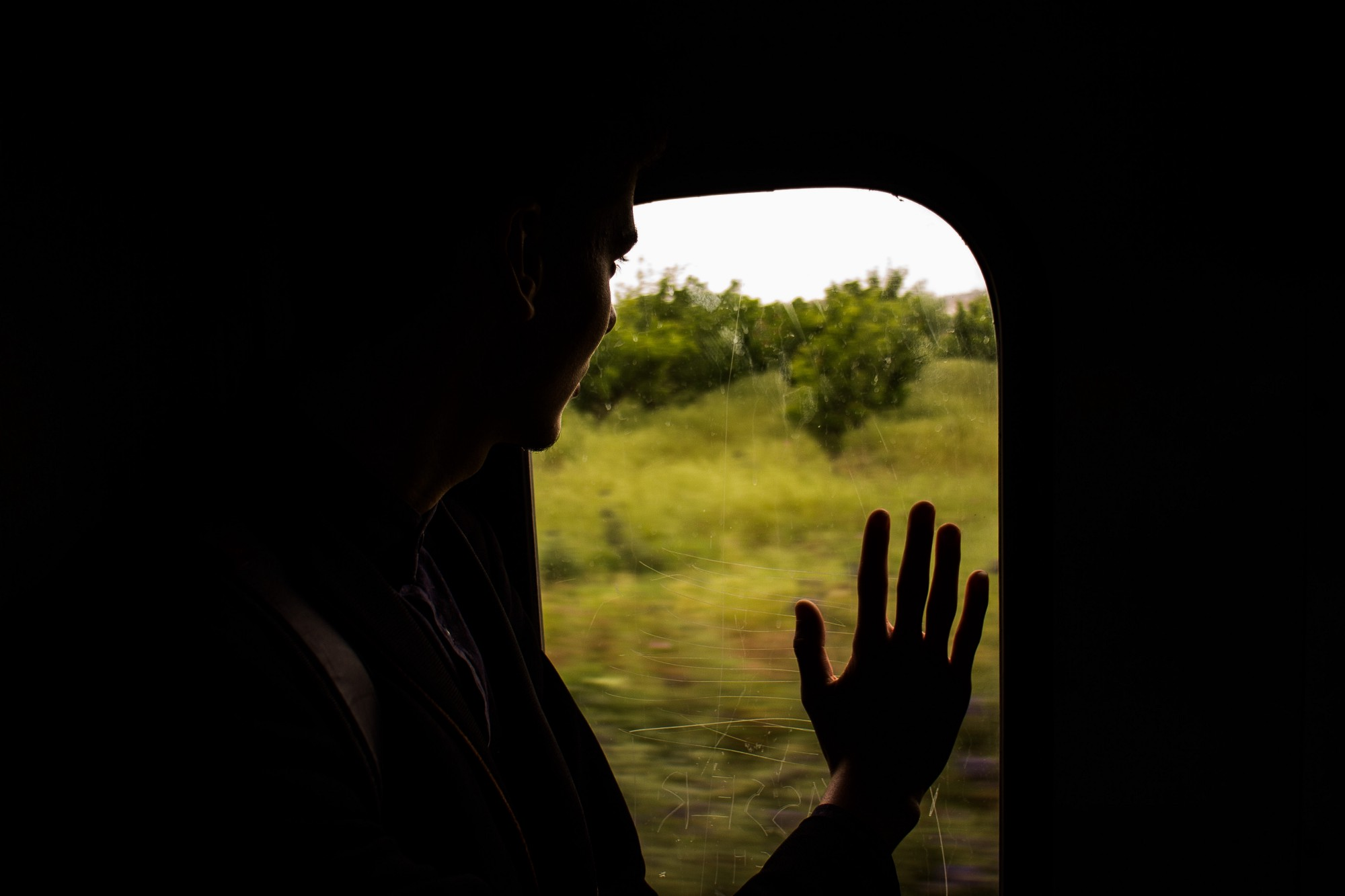 A passenger presses a hand to a glass window as the train rolls past a field with trees