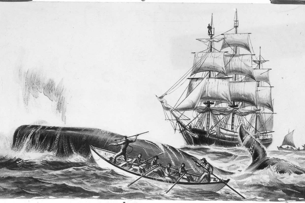 A whaling boat is dwarfed by the enormous whale in the foreground, men in a small boat. There is a schooner in the background