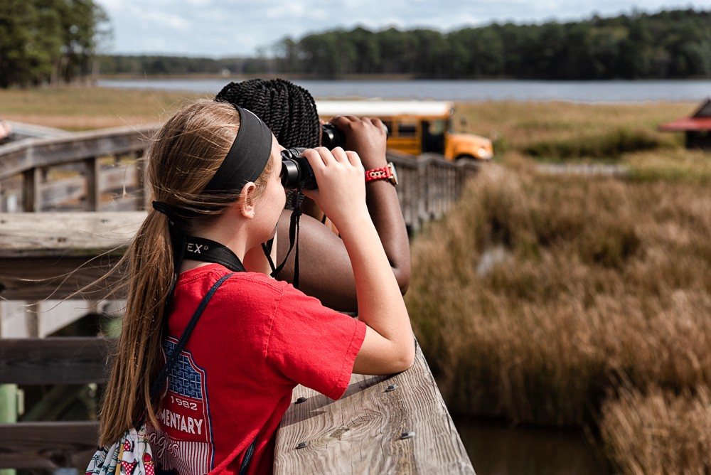 In their natural habitat. Let's hear it for the girls! The best… | by U.S.  Fish & Wildlife Service Northeast Region | Conserving the Nature of the  Northeast | Medium