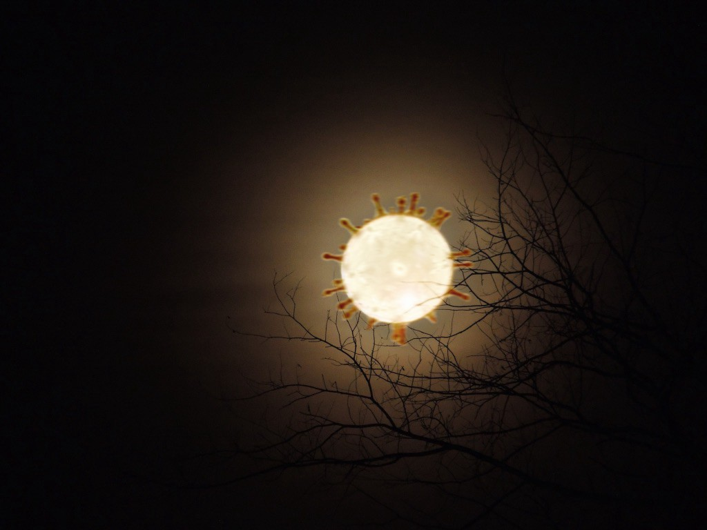 moon with spiky tendrils in a dark sky against bare tree branches