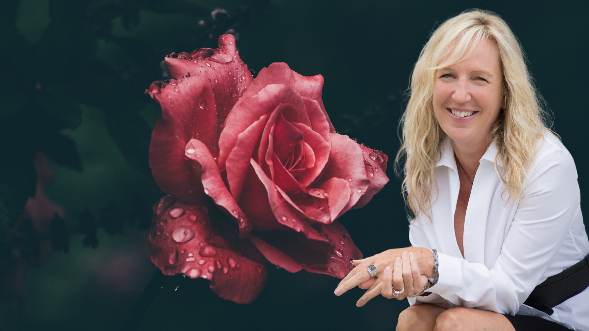 A black background with a single pink rose blooming with a photo of Liz Porter in a white blouse sitting next to it.