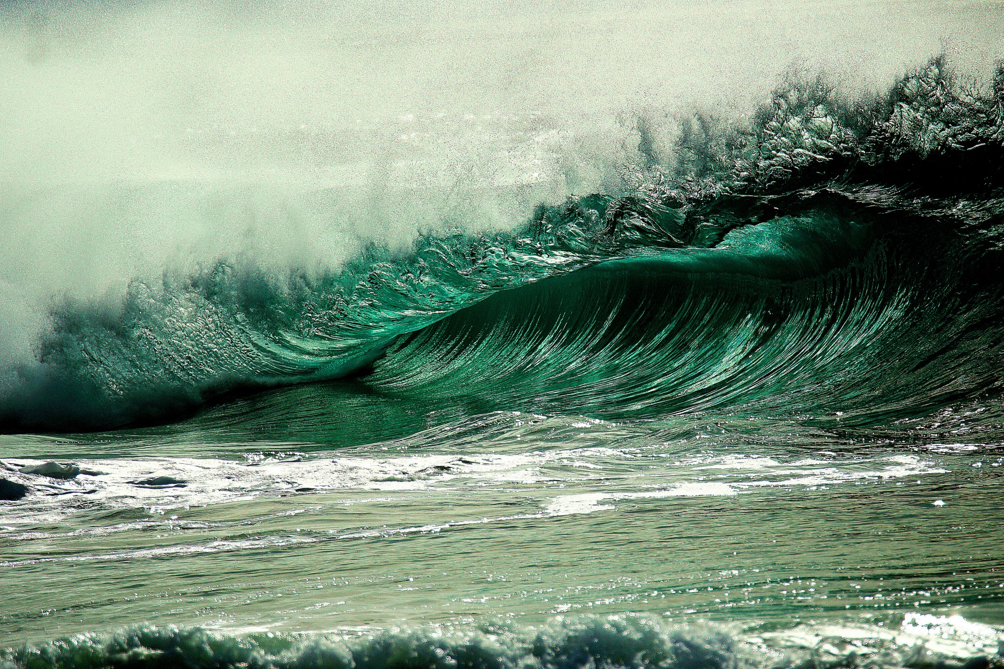 A wave crests before hitting the shore, its roar stilled in the camera's frame, violence captured in a moment of anticipation
