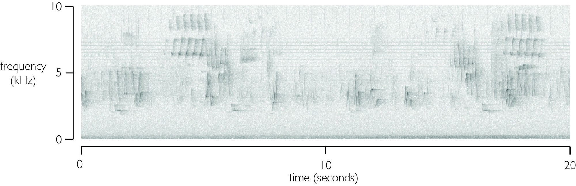 An image showing audio frequency over time