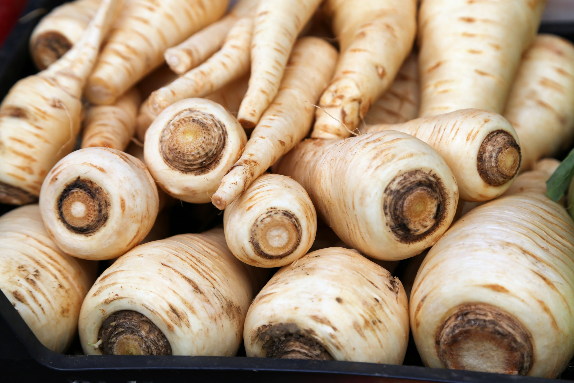 A pile of parsnips.