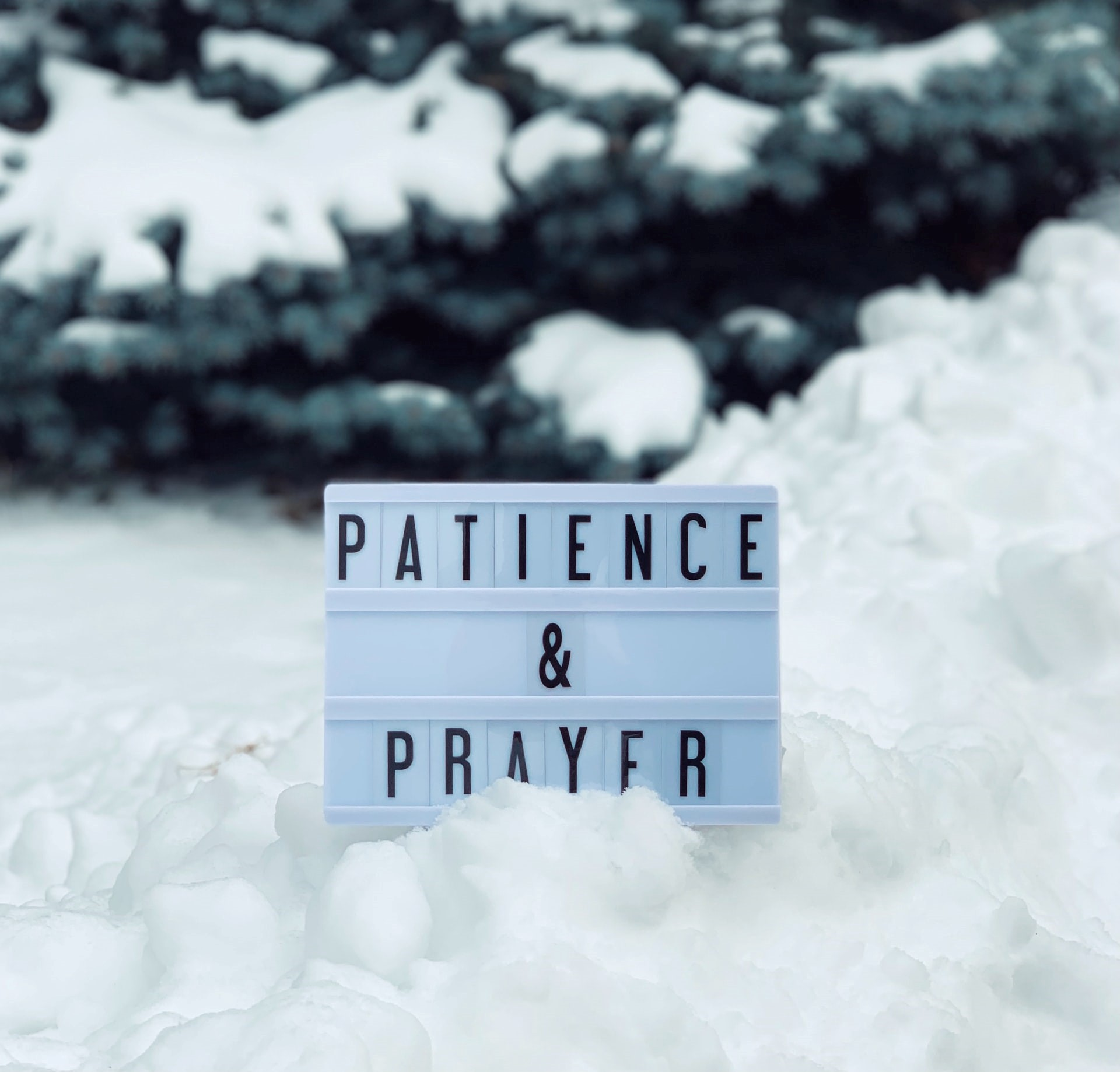 A board with text patience and prayer on the snow with a tree in the background