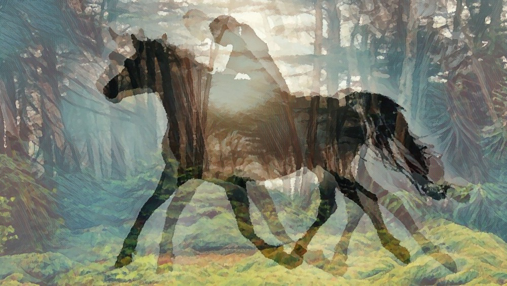 Digital collage of a girl riding a horse, superimposed on a forest.