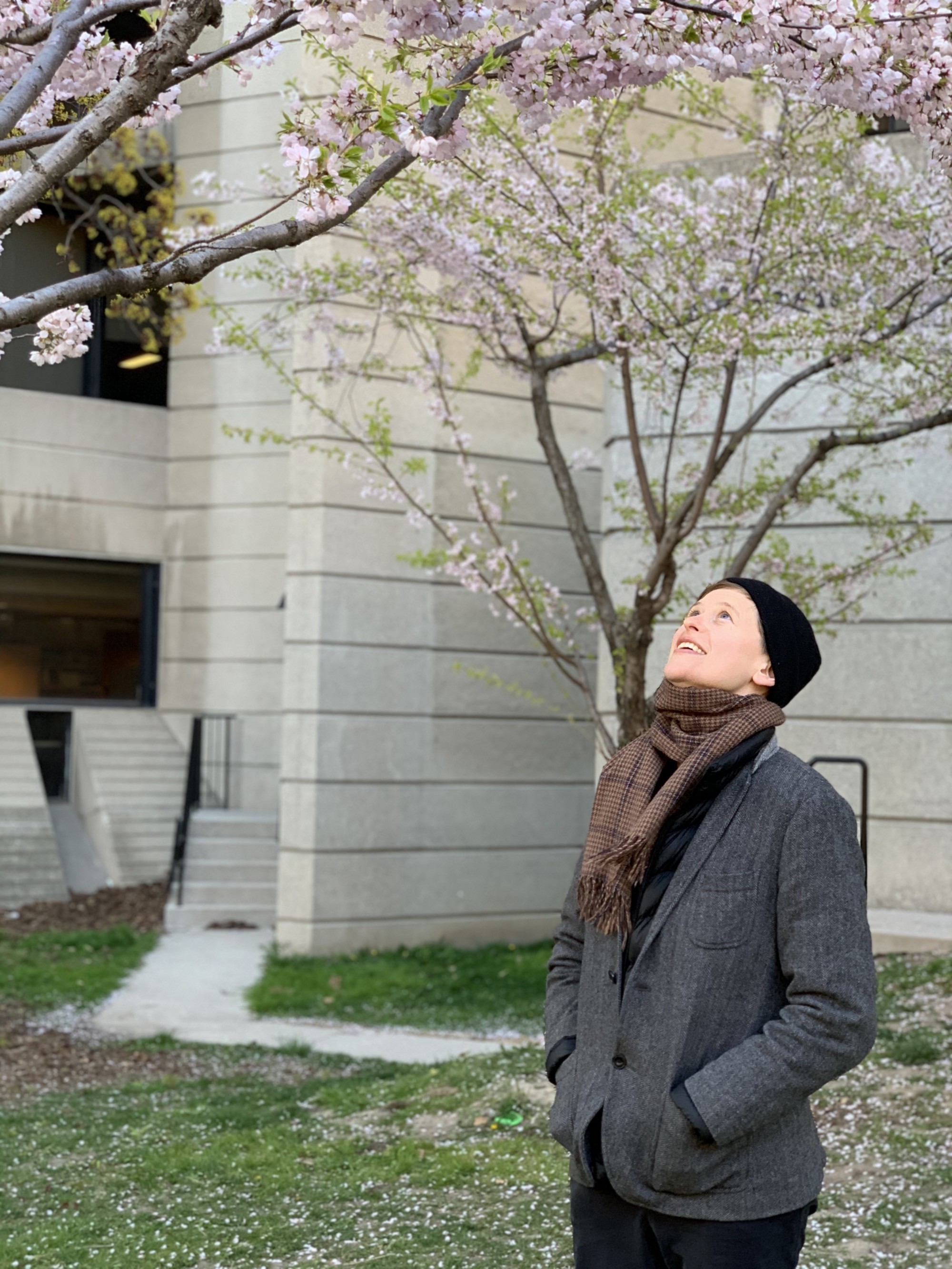 Photo of the poet and writer looking up into the cherry blossom trees. They are wearing a grey jacket and a black hat.