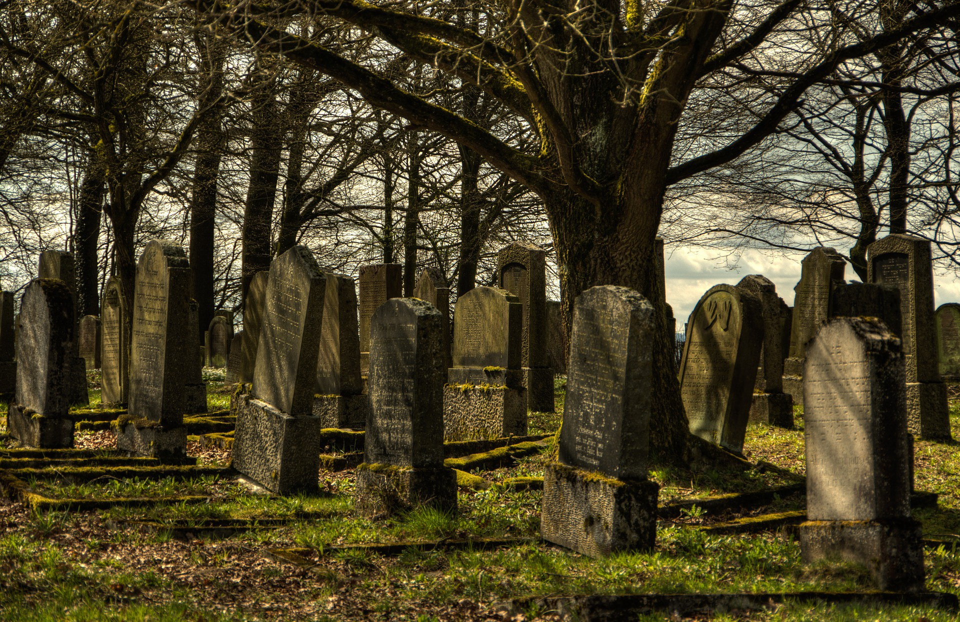 An old cemetery with grey tombstones with moss growing on them.