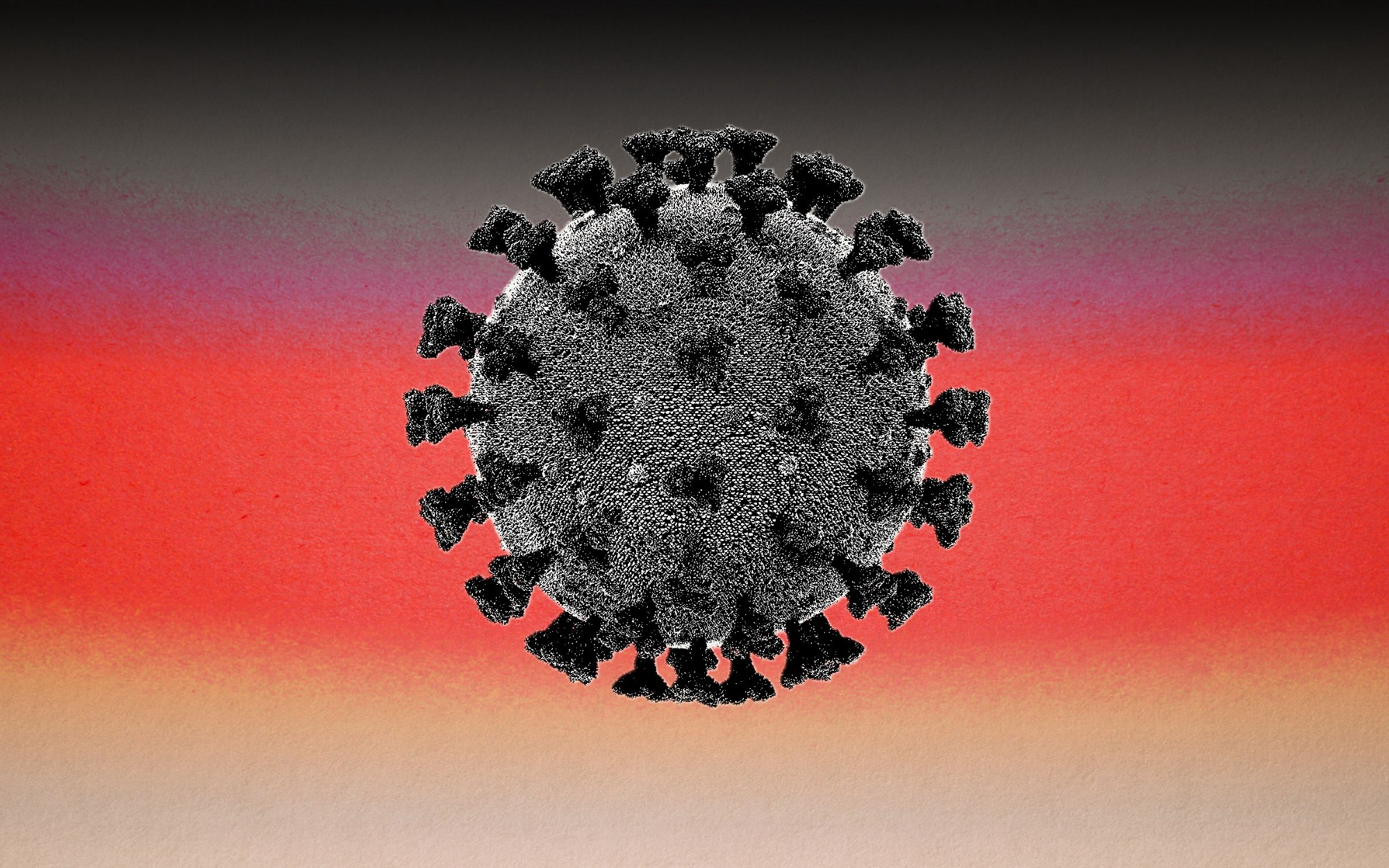 A photo of a black microscoped coronavirus against a black-red-cream gradient background.