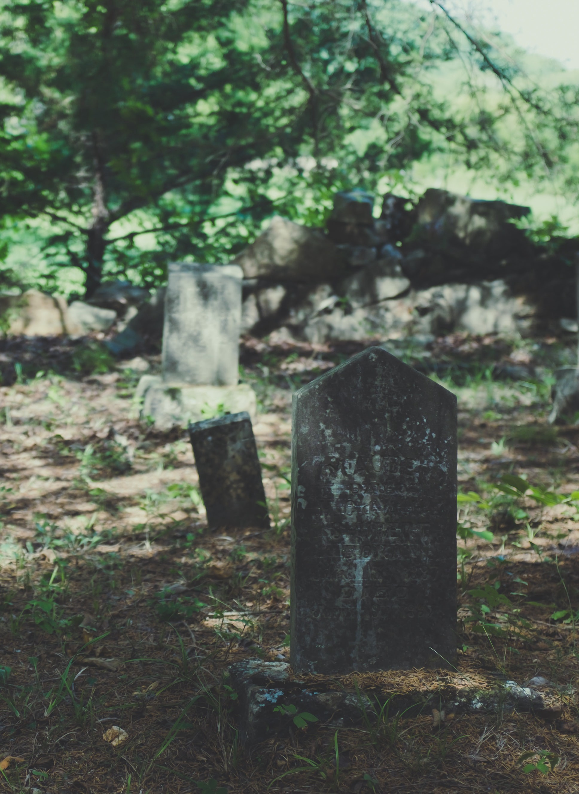 Picture of several very weathered gravestones in a cemetery in the woods.