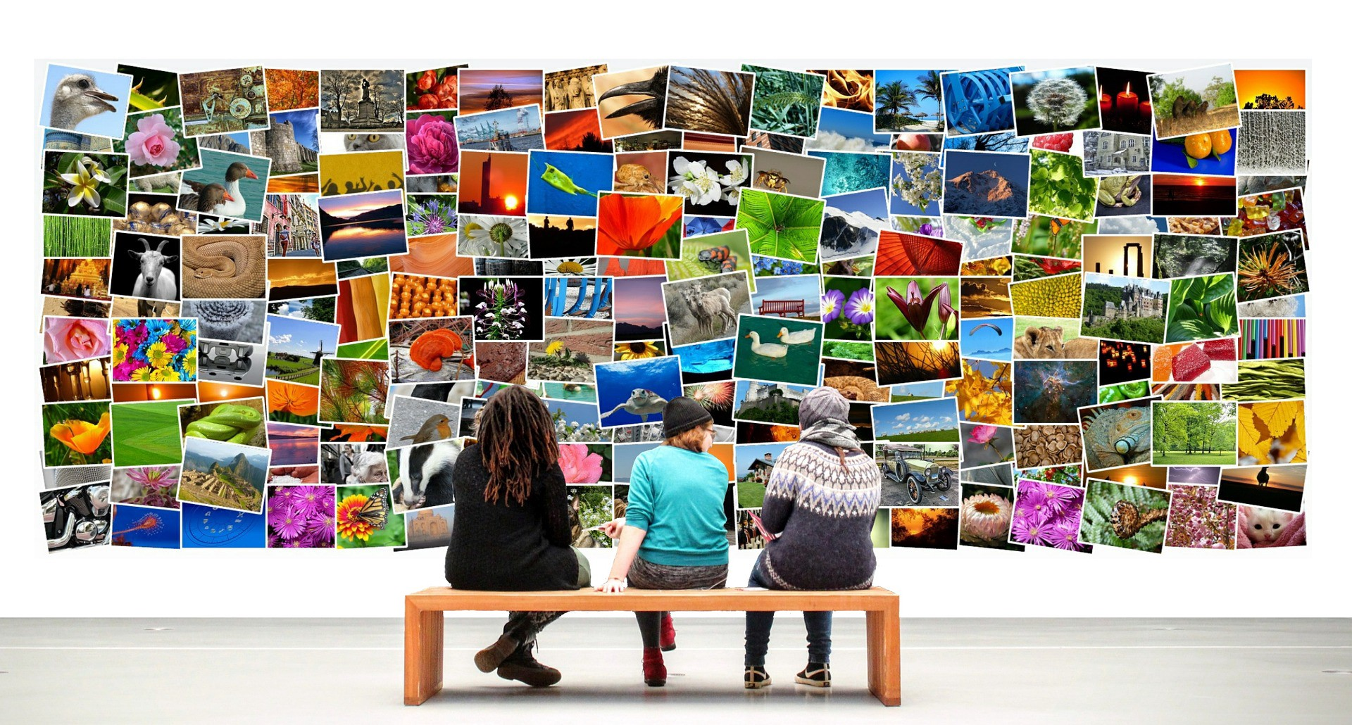 Can You Make a Decent Living Selling Your Art and Photography Online?