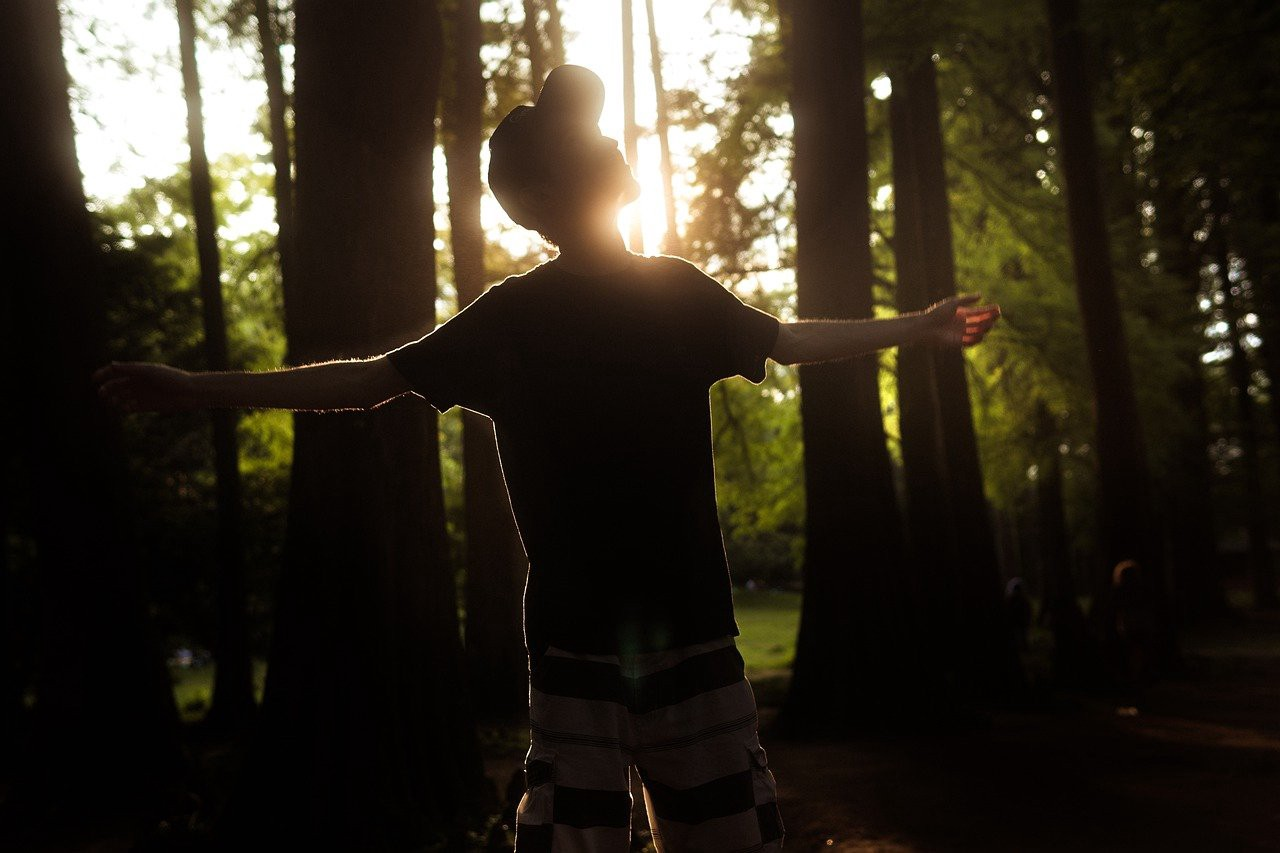 man holding arms out in a forest as the sun sets