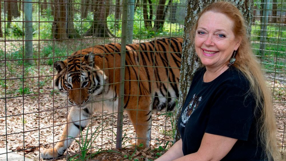 Carole Baskin next to a caged tiger at her big cat sanctuary