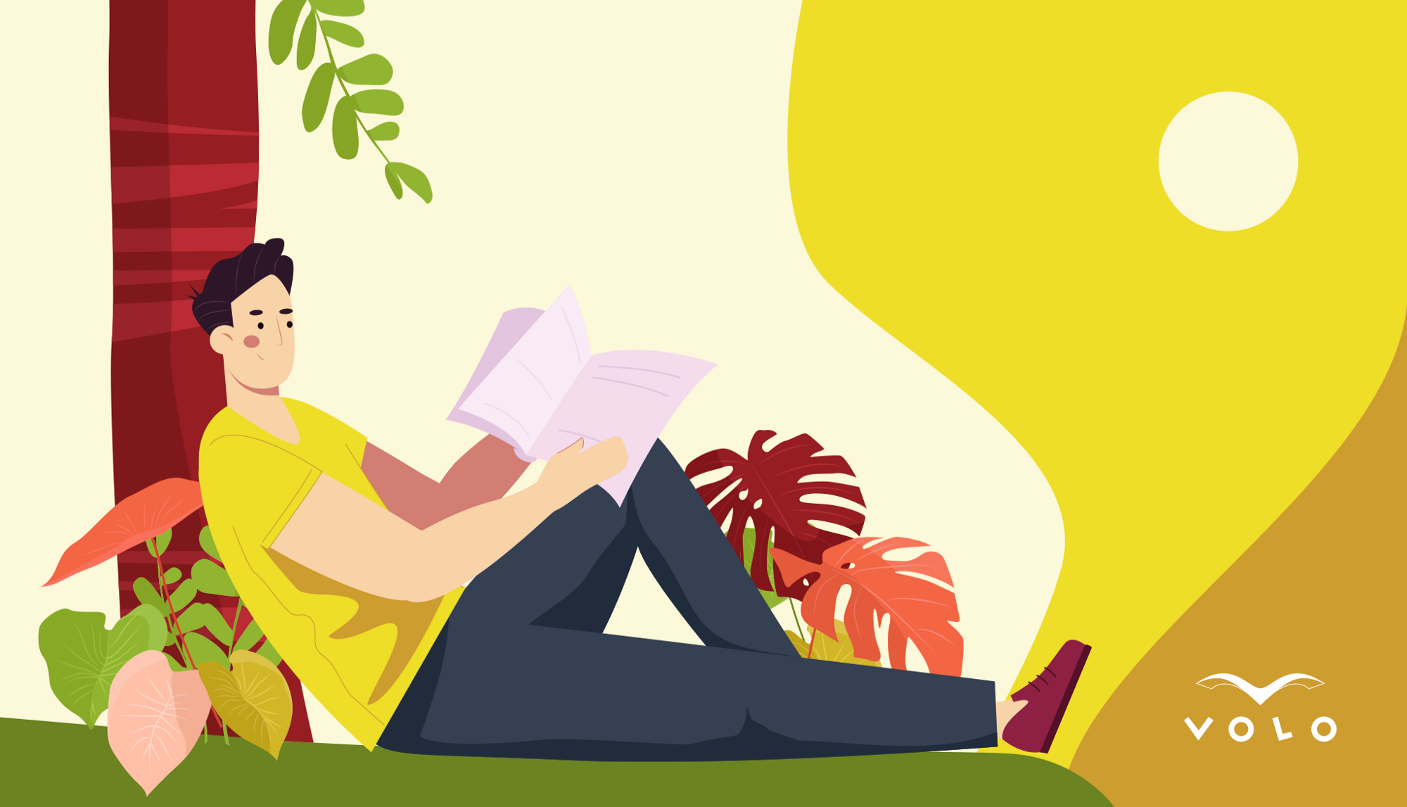 Summer Reading List for Beginner Programmers from VOLO