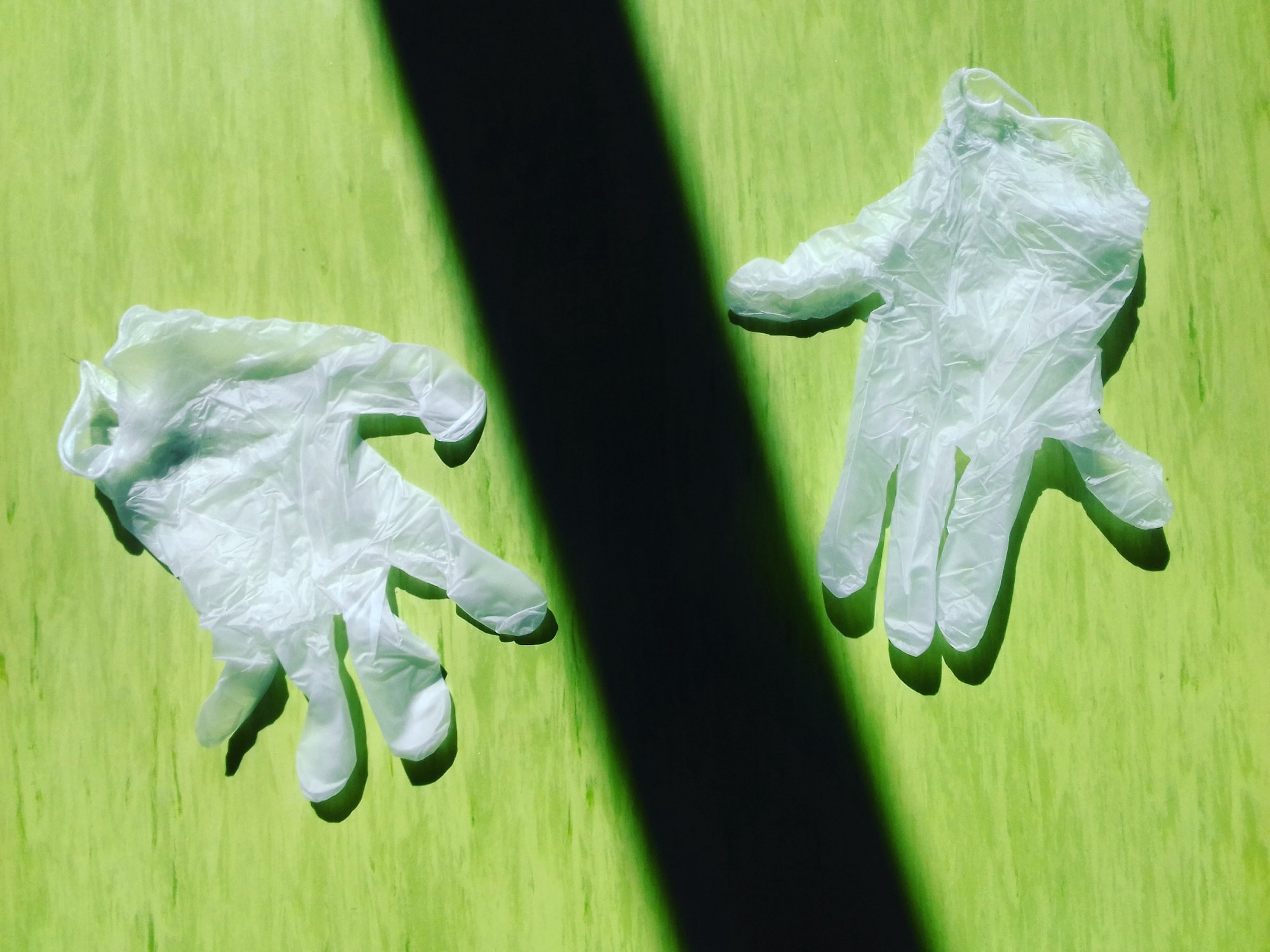 2 used surgical gloves on a green surface with a rectangular shadow falling between them.