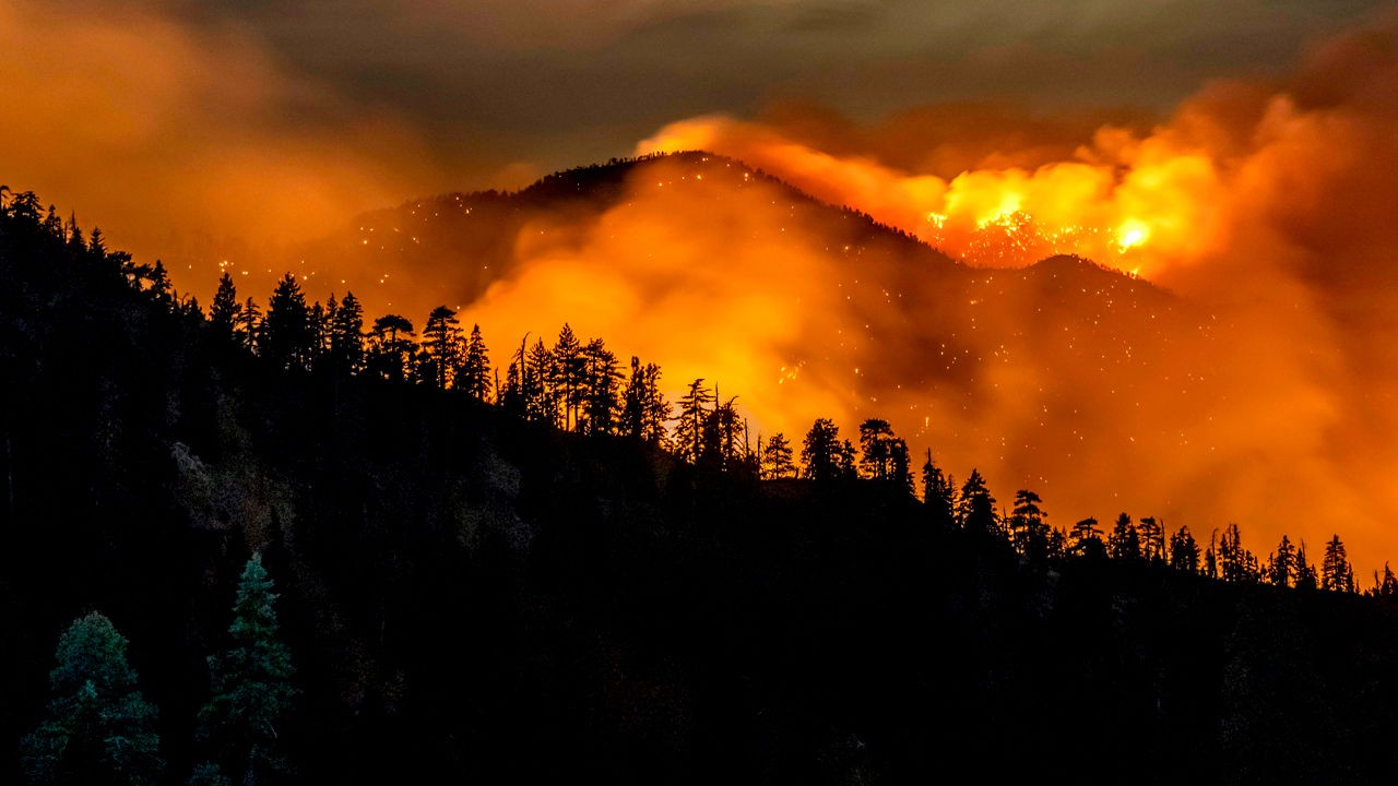 The Bobcat fire burning in the Angeles National Forest in California KYLE GRILLOT/AFP VIA GETTY IMAGES