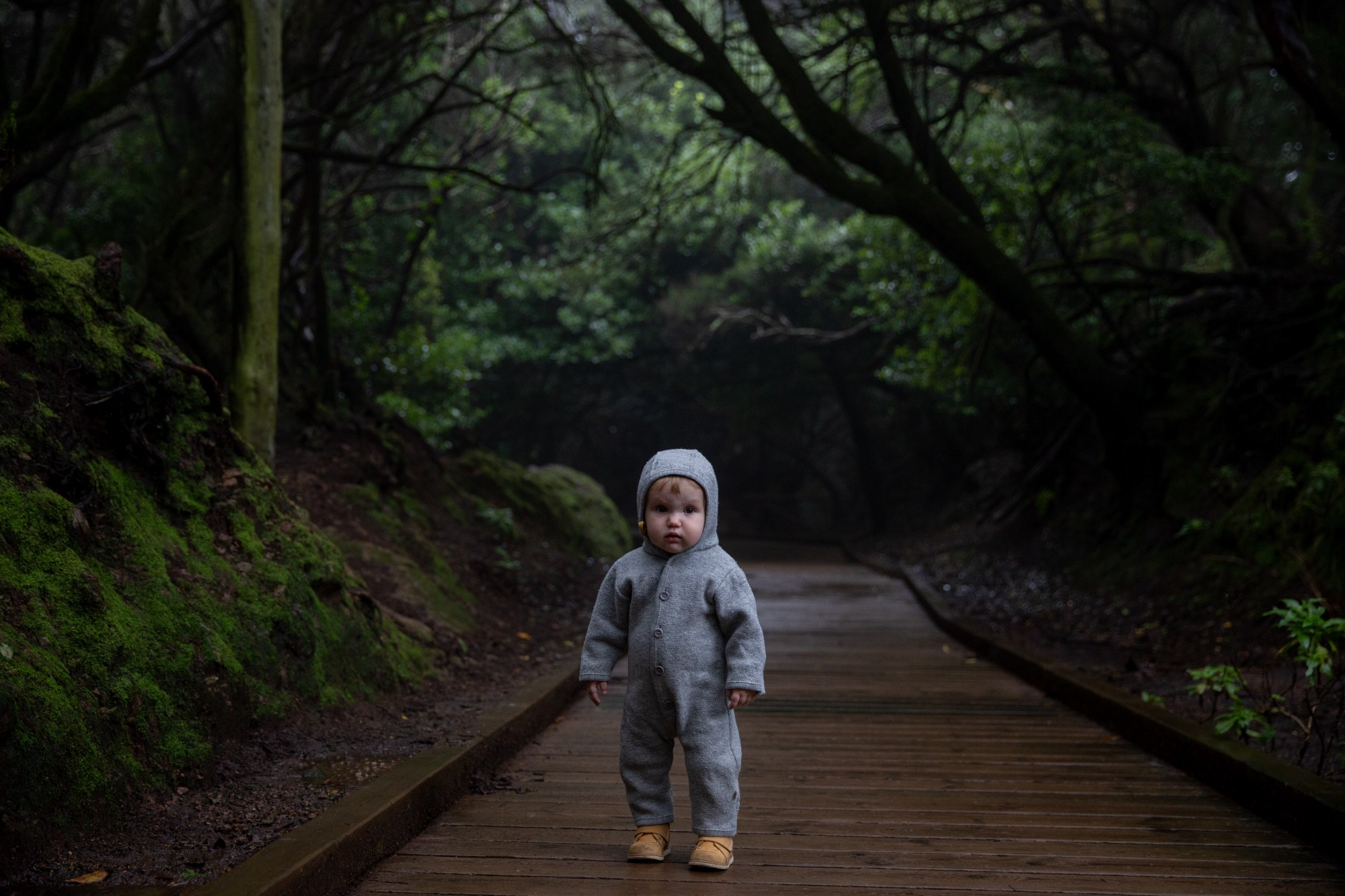 A scared-looking Infant toddler in a grey hooded onesie standing on a wood board path in the middle of a lush green forest.
